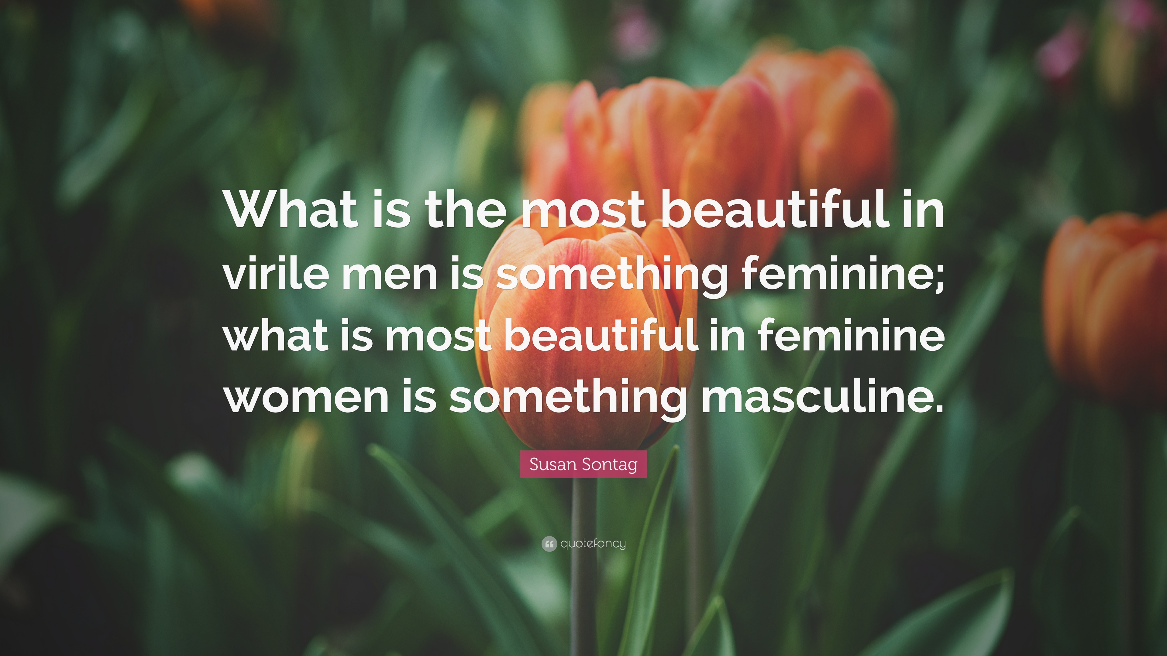 Susan sontag quote what is the most beautiful in virile men is susan sontag quote what is the most beautiful in virile men is something feminine izmirmasajfo