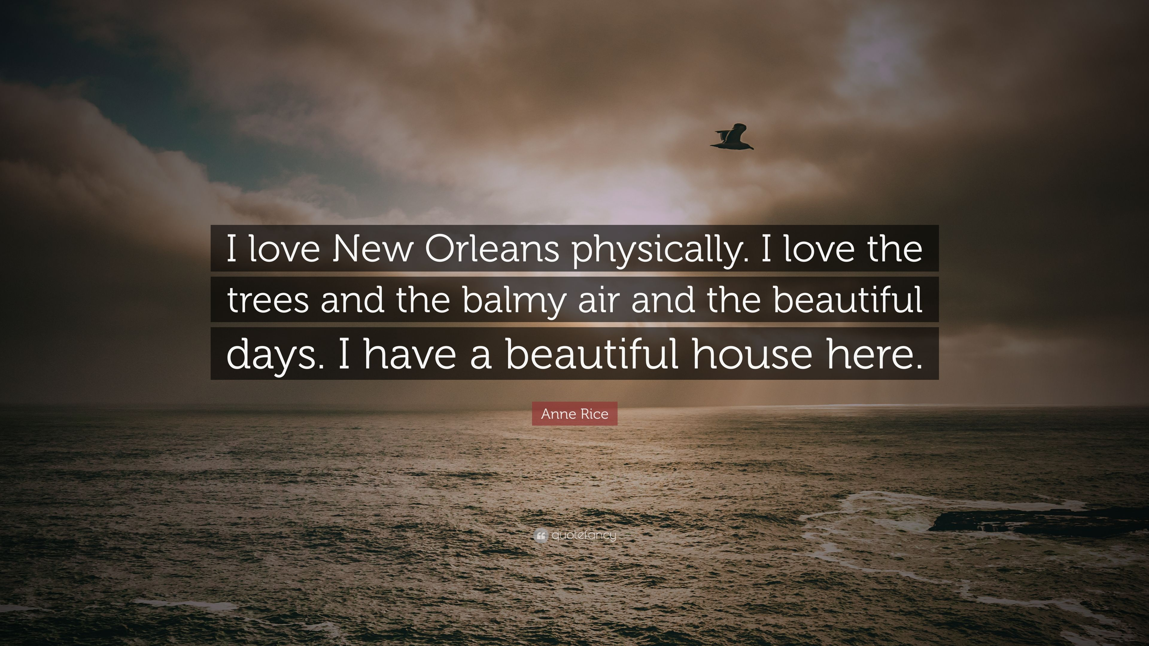 """Anne Rice Quote: """"I love New Orleans physically. I love the ..."""