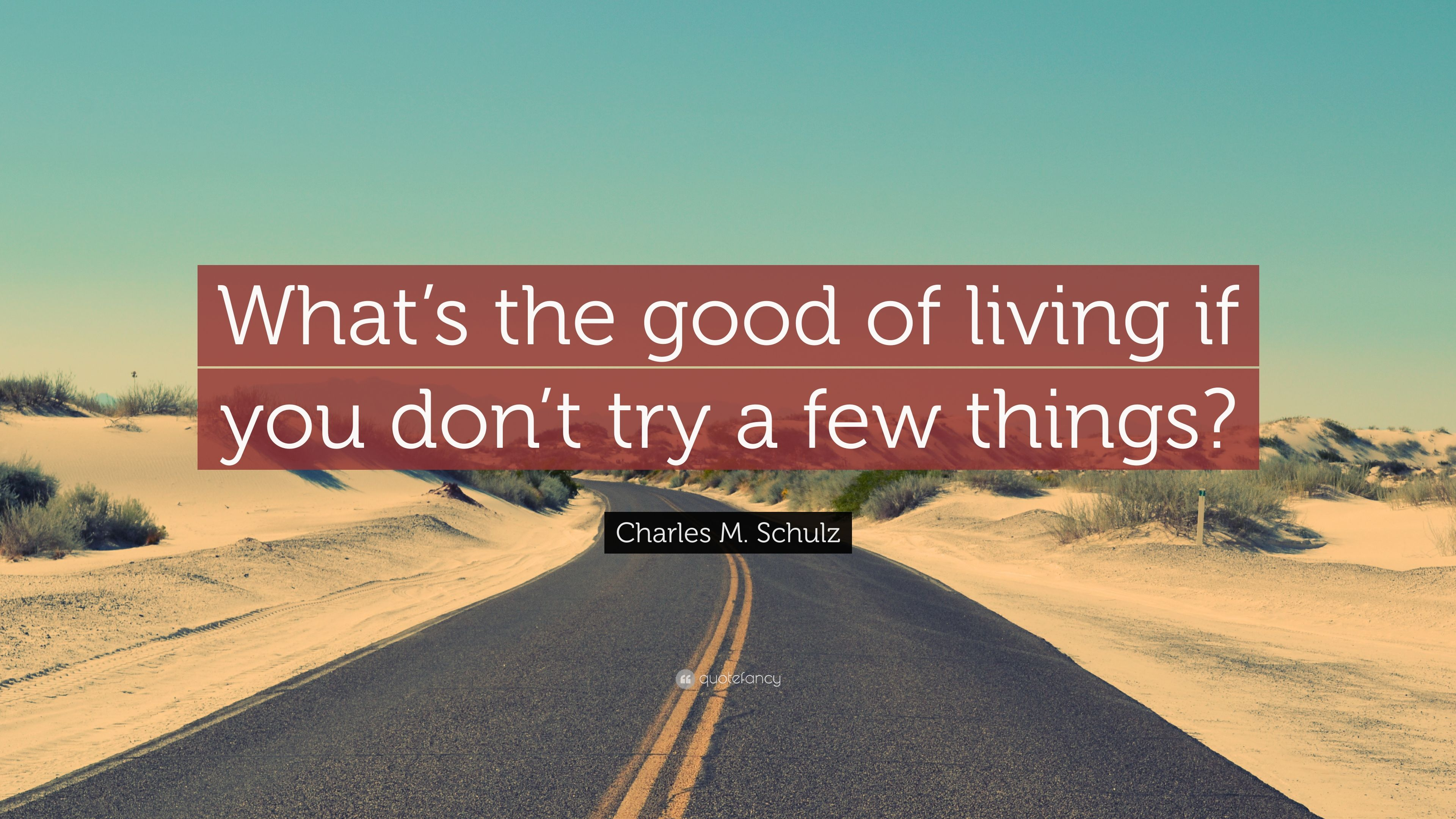 """Charles M. Schulz Quote: """"What's the good of living if you don't ..."""