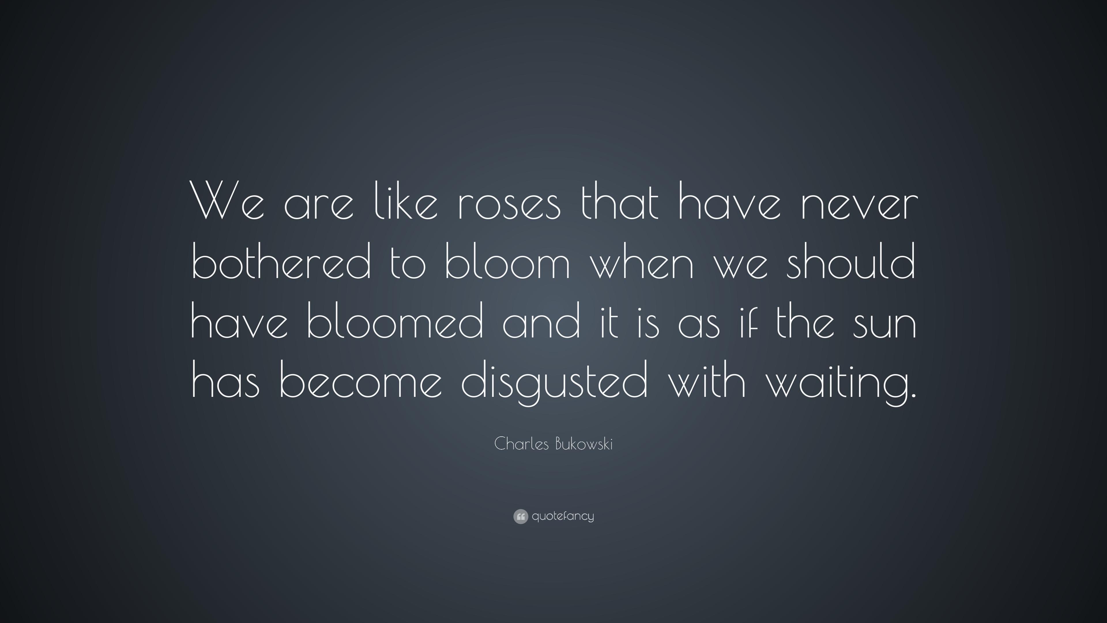 Charles Bukowski We Are Like Roses That Have Never Bothered To Bloom W...