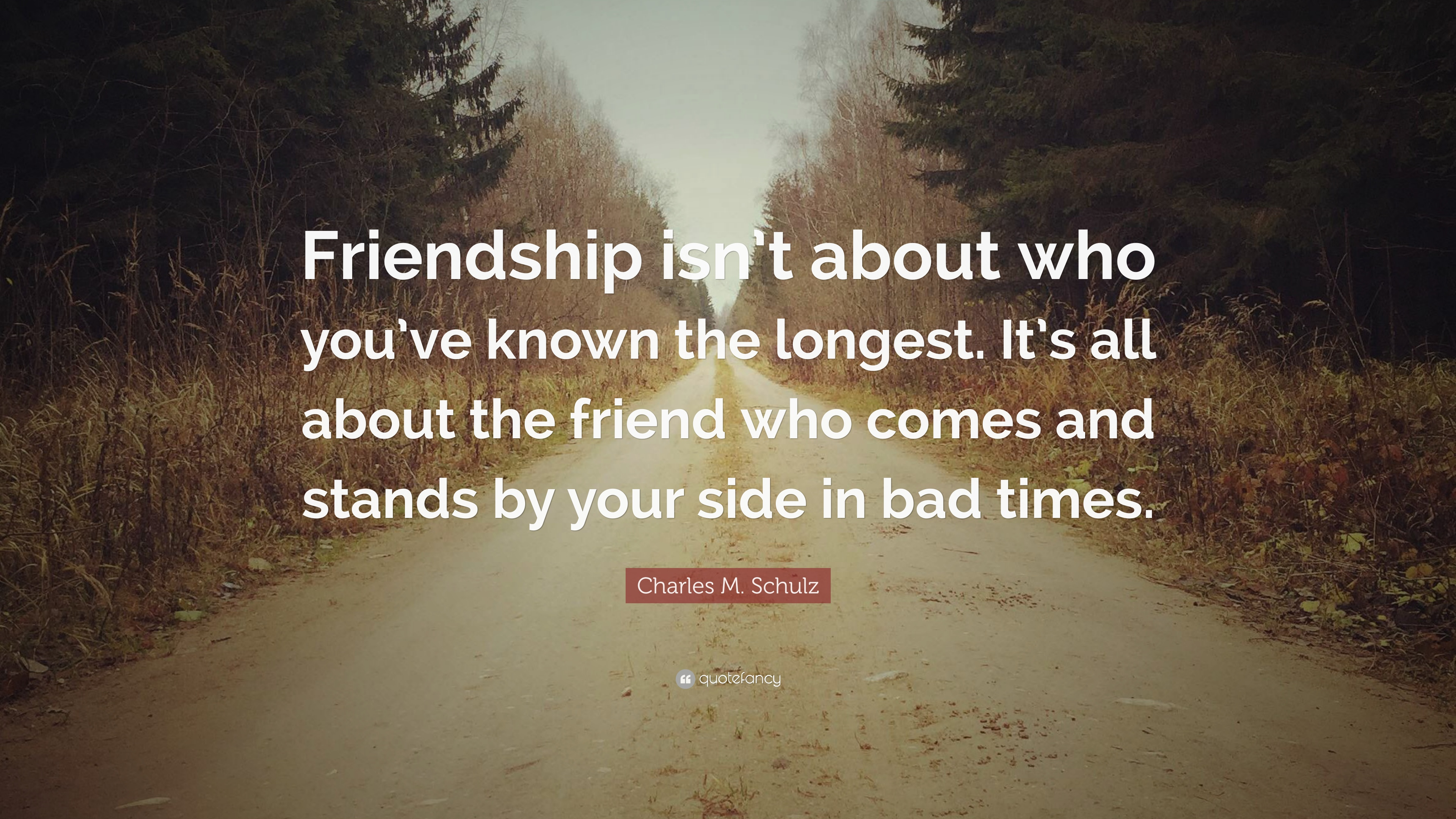 Charles M Schulz Quote Friendship Isnt About Who Youve Known