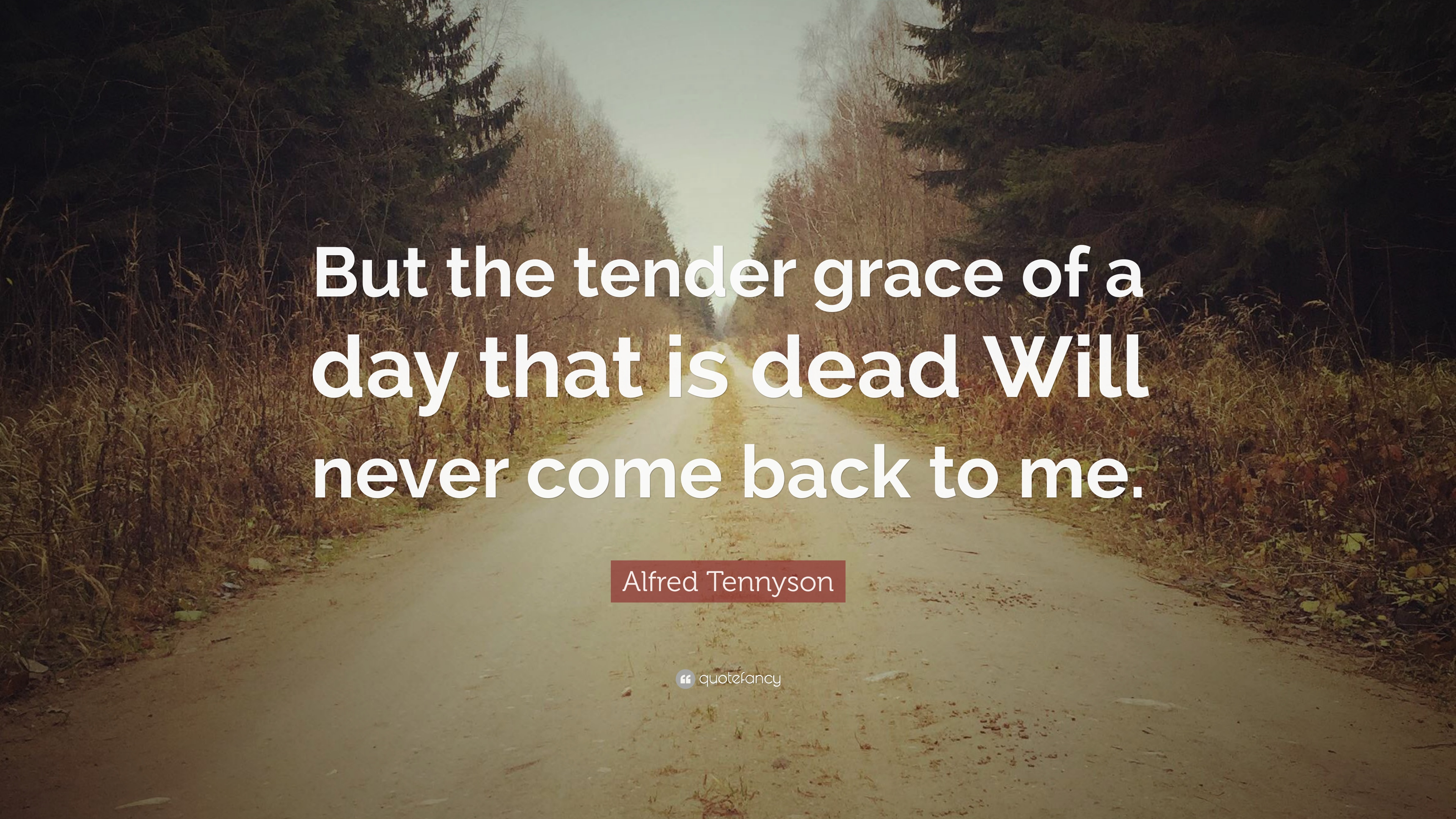 Alfred Tennyson Quote But The Tender Grace Of A Day That Is Dead