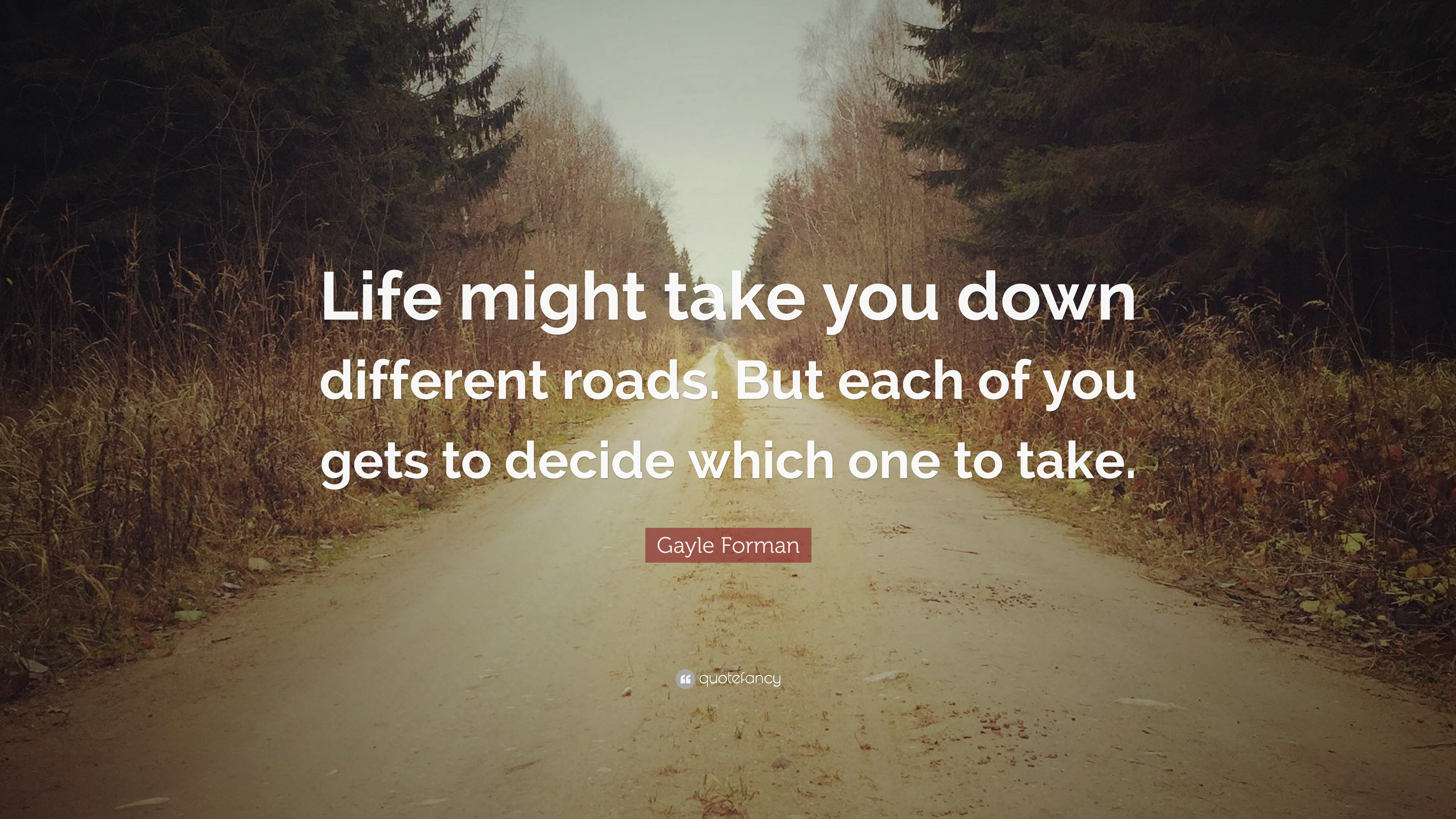 Gayle Forman Quote Life Might Take You Down Different Roads But