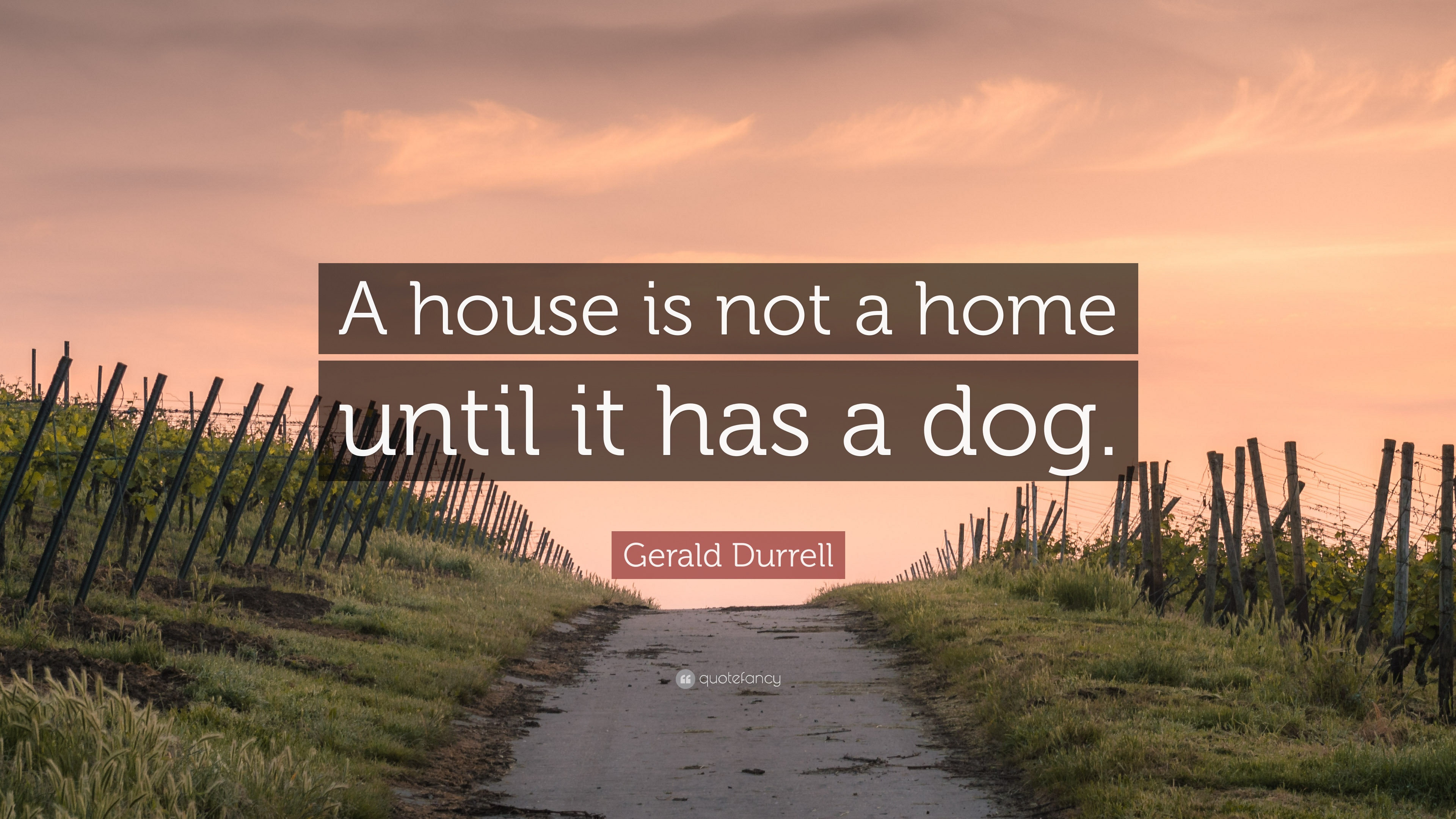 Gerald Durrell Quote A House Is Not A Home Until It Has A Dog 7