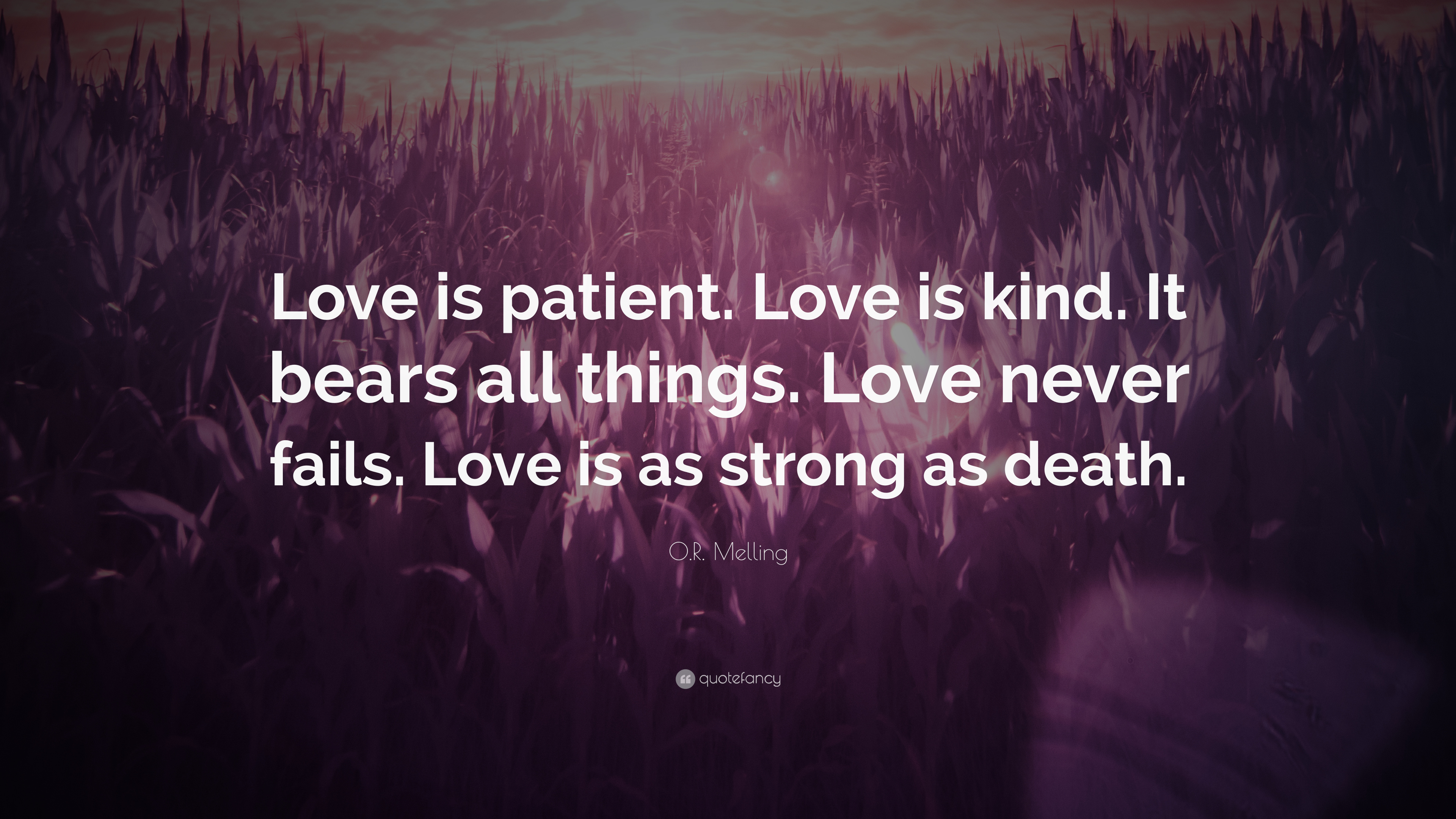 "Love Is Patient Love Is Kind Quote O.rmelling Quote ""Love Is Patientlove Is Kindit Bears All"