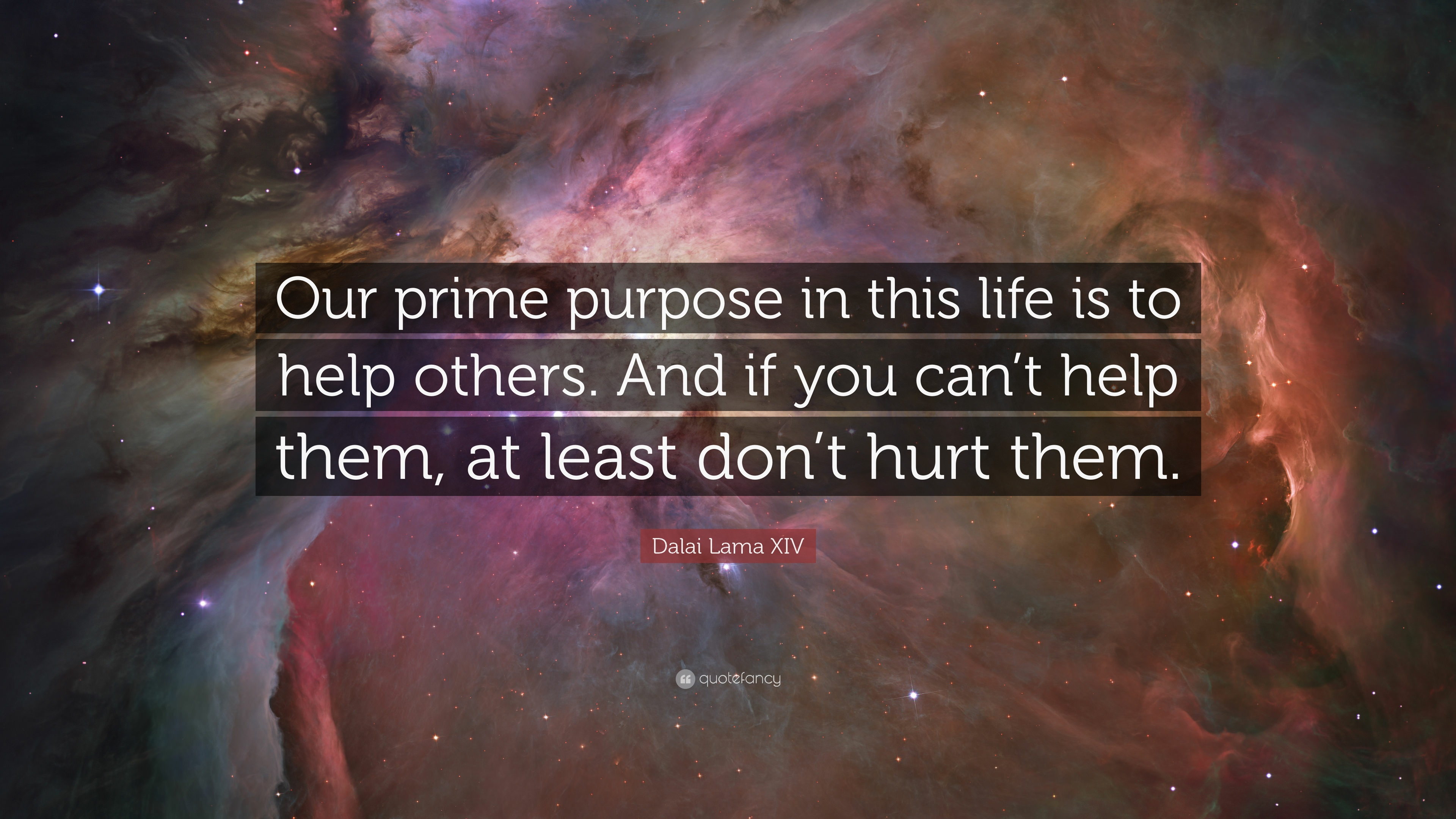 Help Others The Purpose Of Life Quotes On Helping Others Help Others The  Purpose Of Life