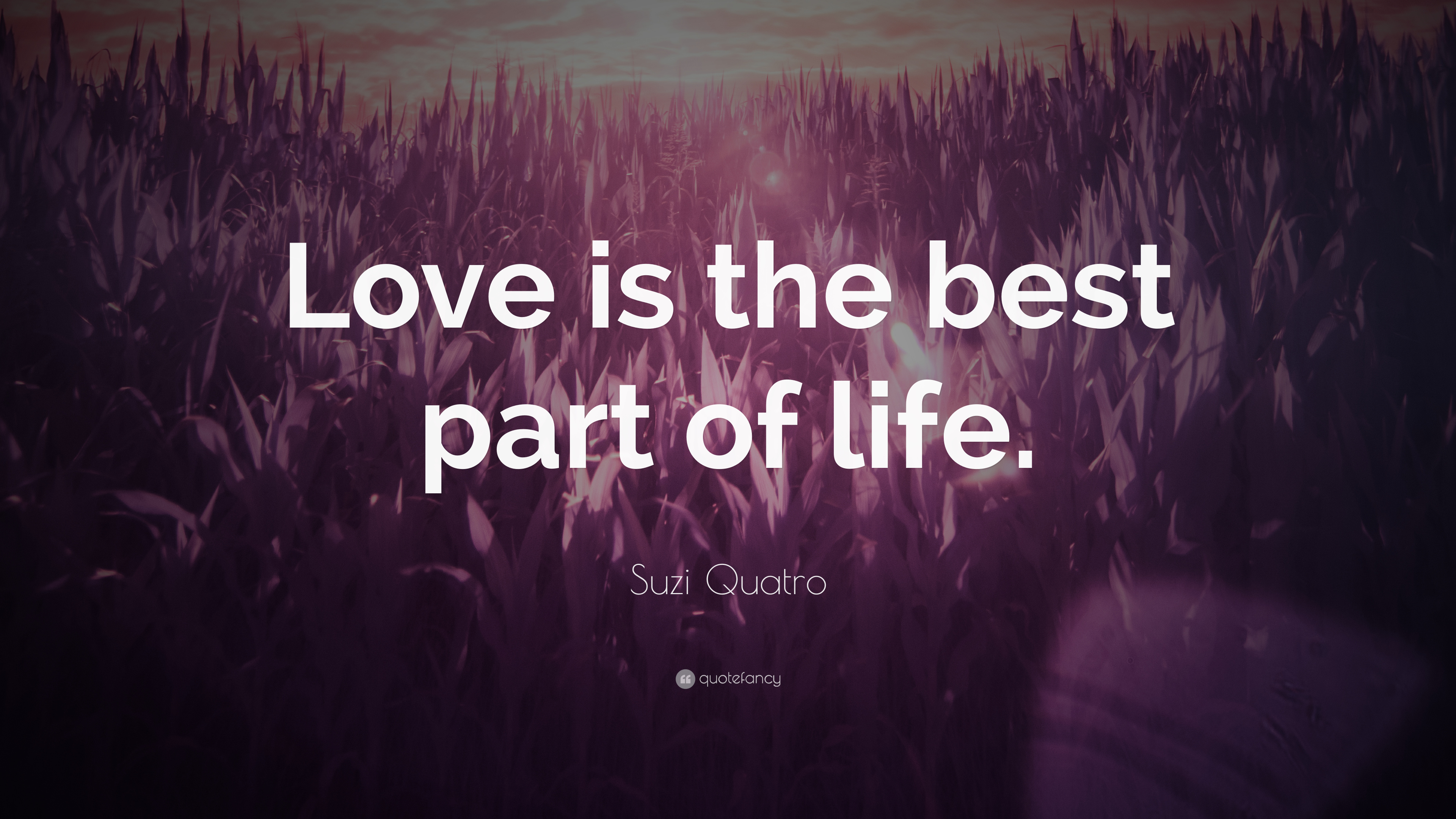 Suzi Quatro Quote Love Is The Best Part Of Life 7 Wallpapers