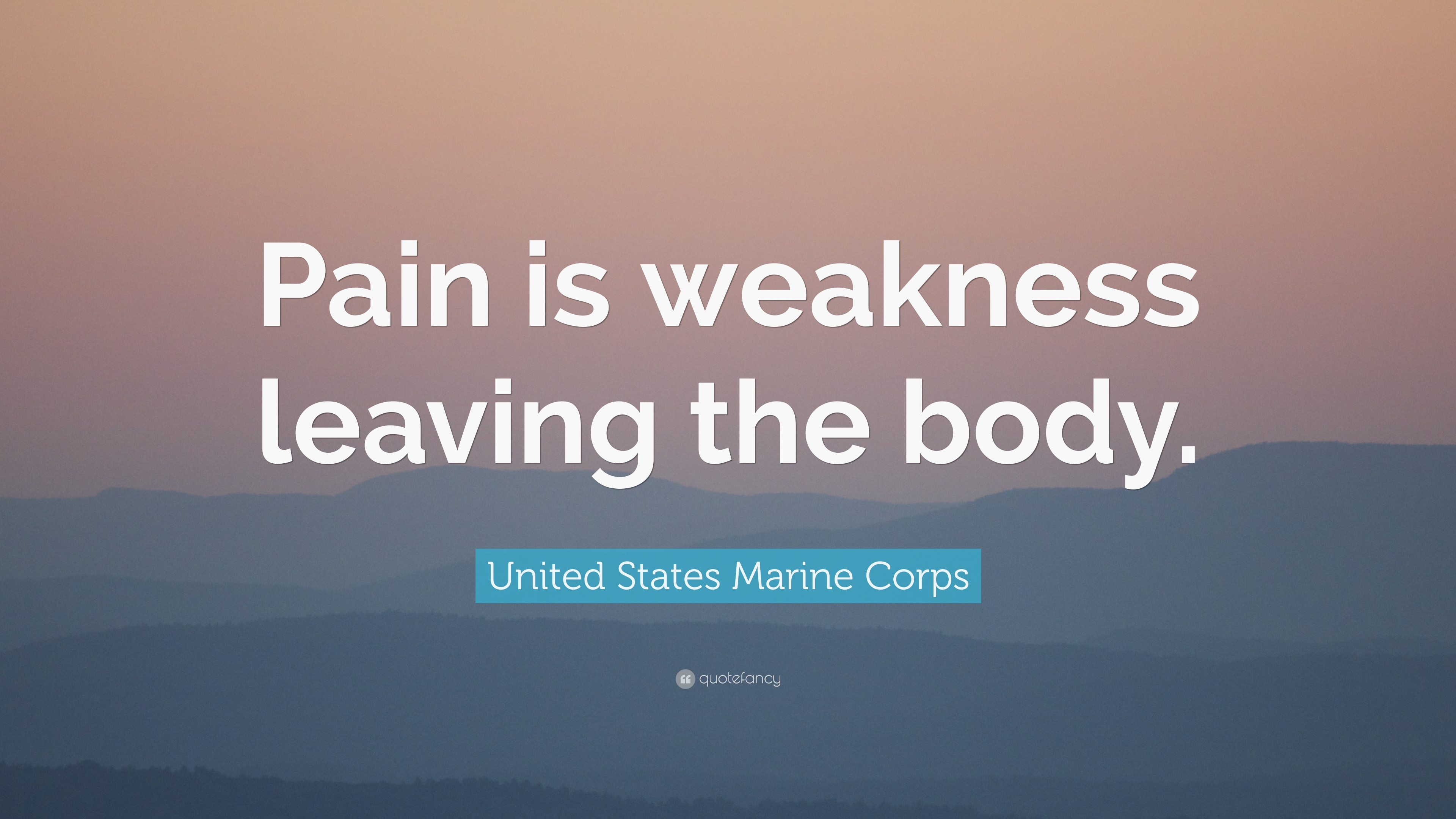 """Marine Corps Quotes United States Marine Corps Quote """"Pain Is Weakness Leaving The"""