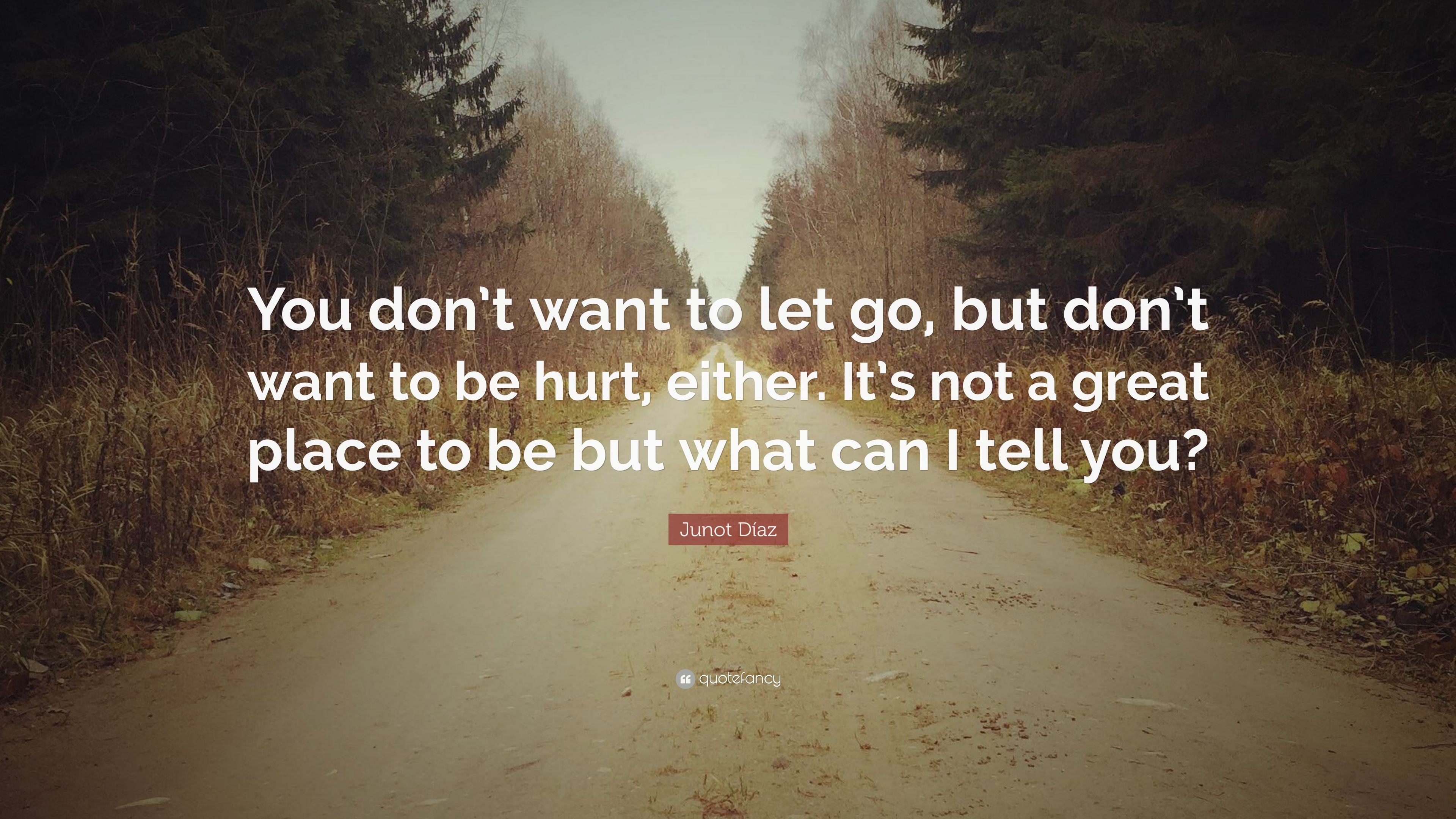 Junot Díaz Quote You Dont Want To Let Go But Dont Want To Be