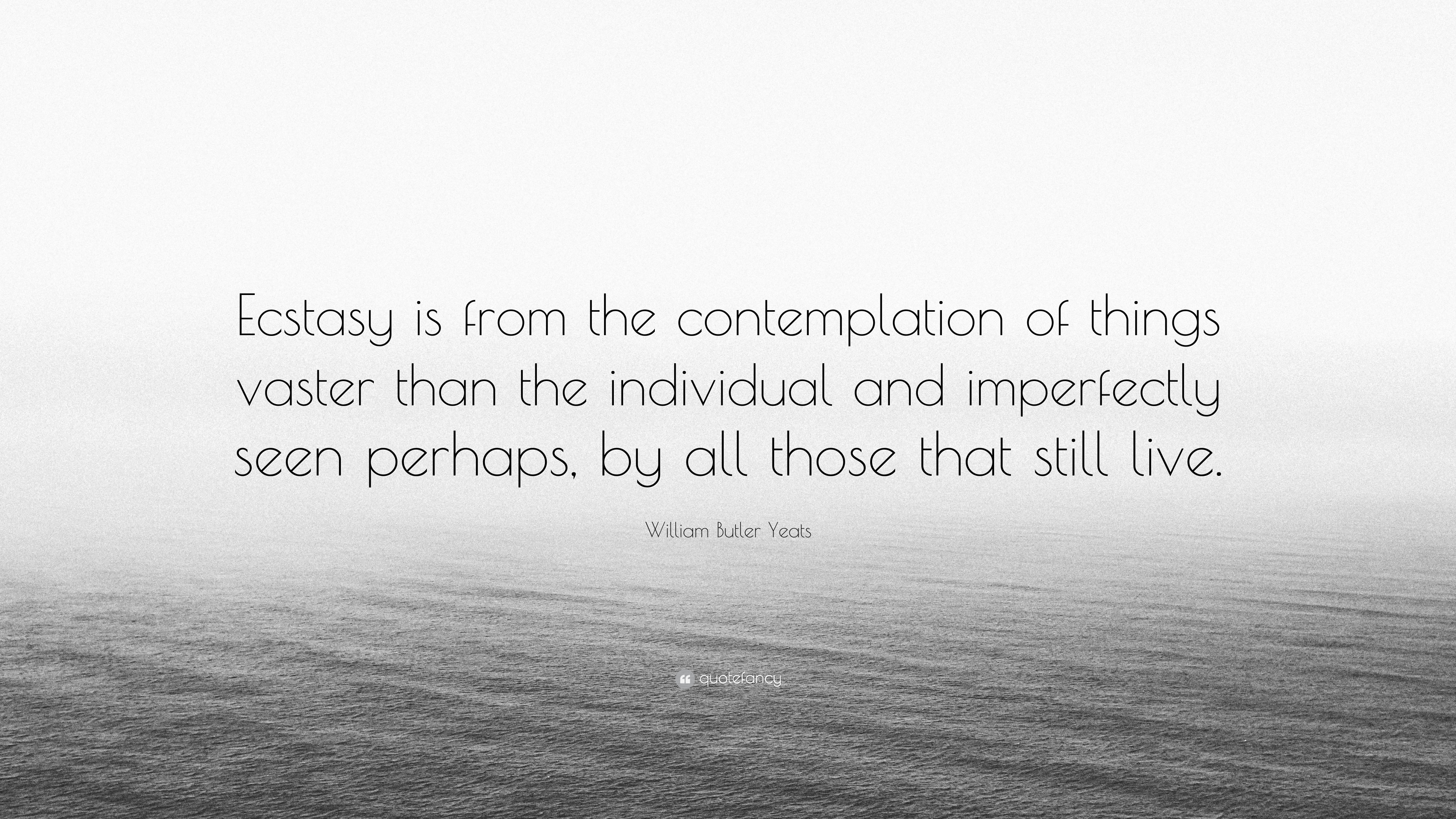 From Contemplation to Ecstasy