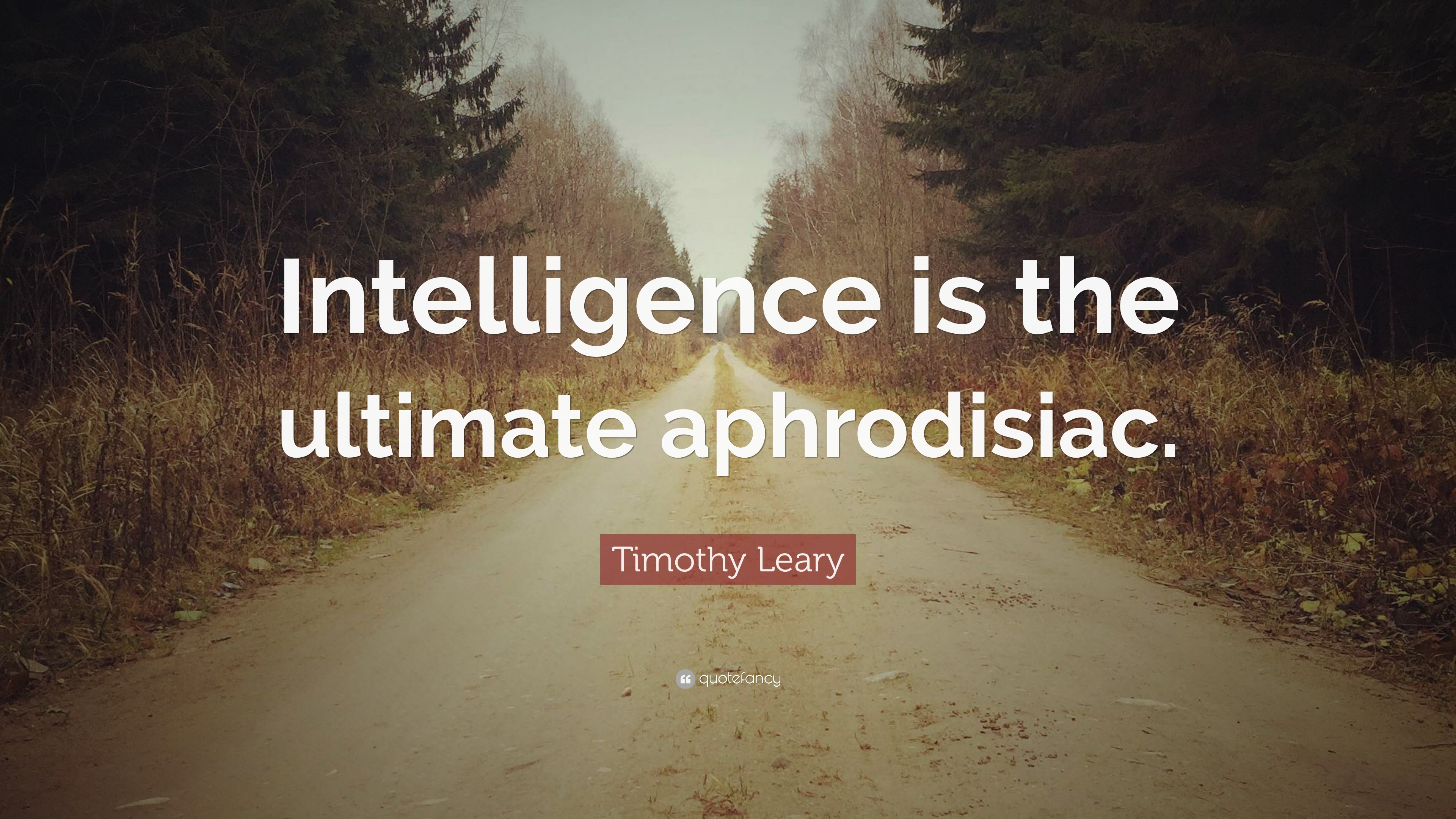 Intelligence is the ultimate aphrodisiac