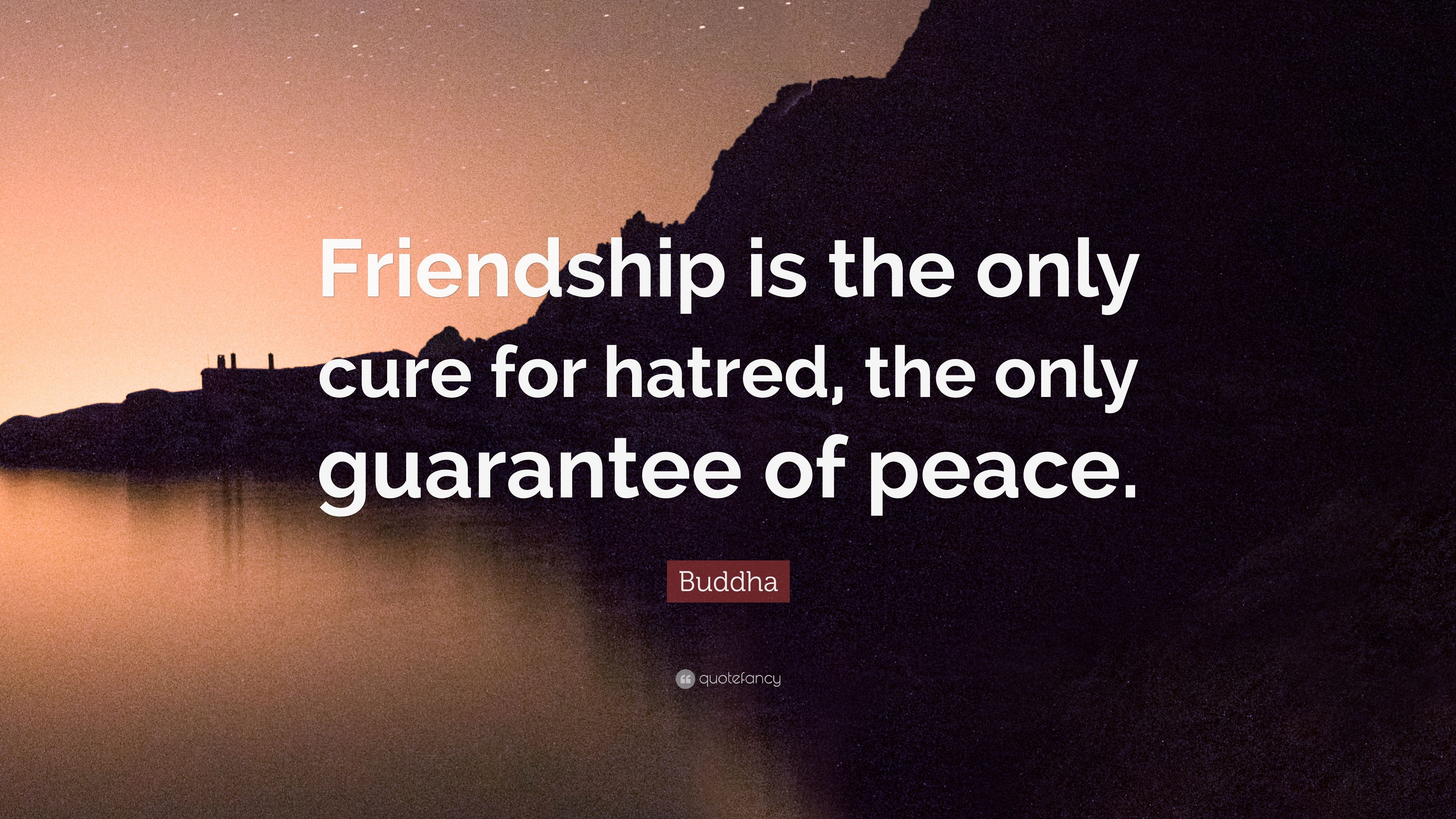 """Buddha Quotes About Friendship Buddha Quote """"Friendship Is The Only Cure For Hatred The Only"""