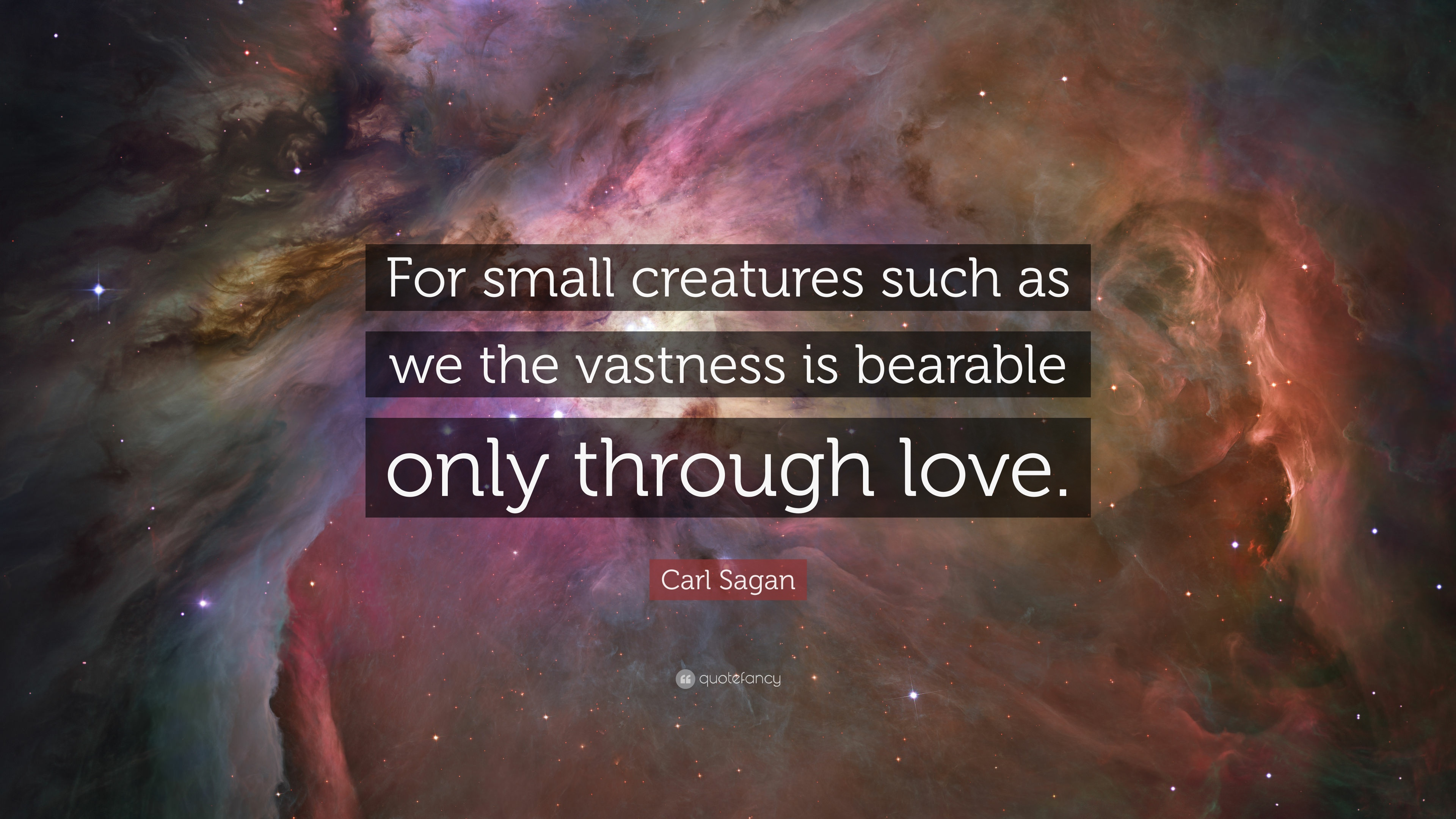 Carl Sagan Quote: U201cFor Small Creatures Such As We The Vastness Is Bearable  Only