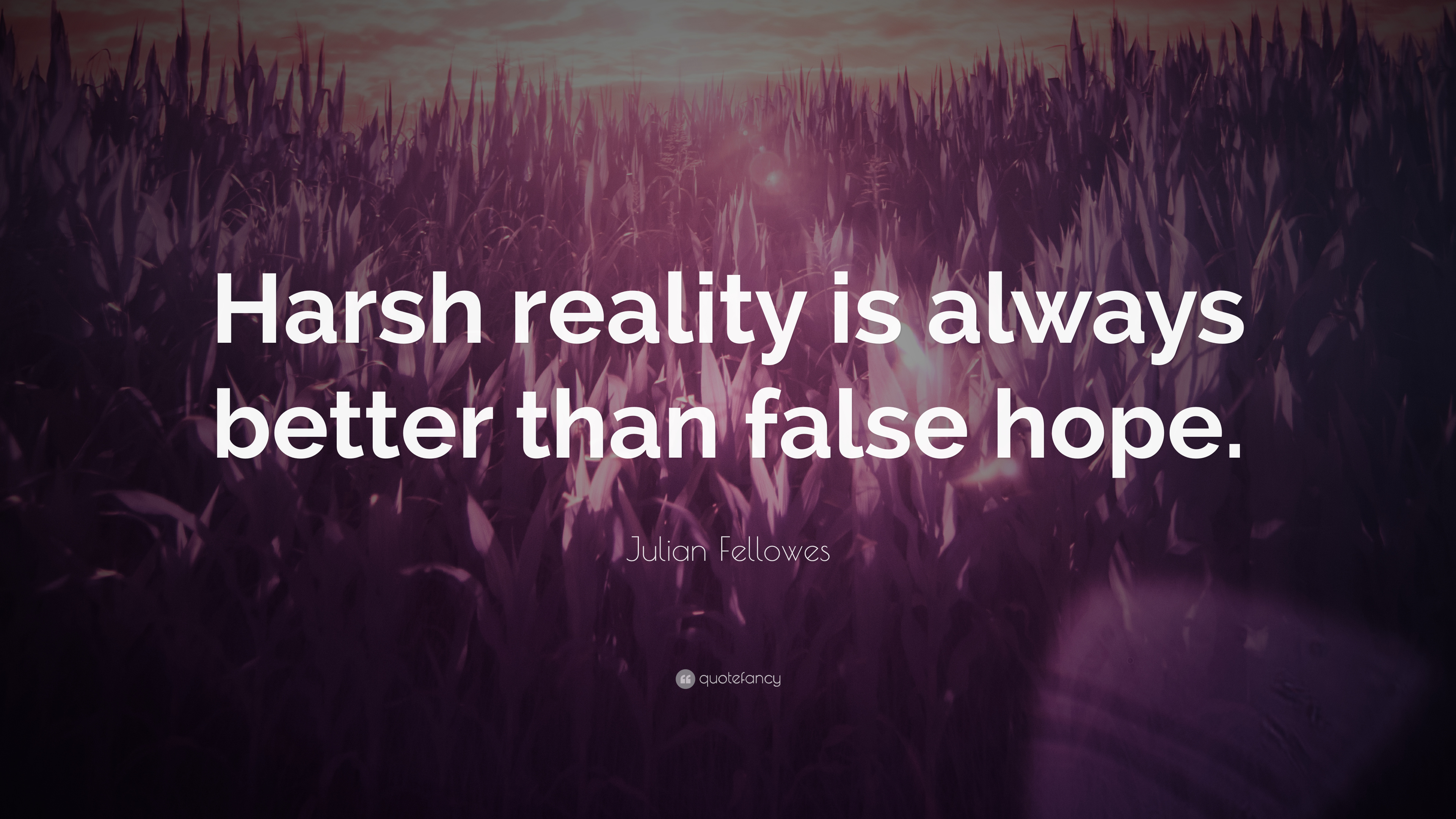 """Julian Fellowes Quote: """"Harsh Reality Is Always Better"""