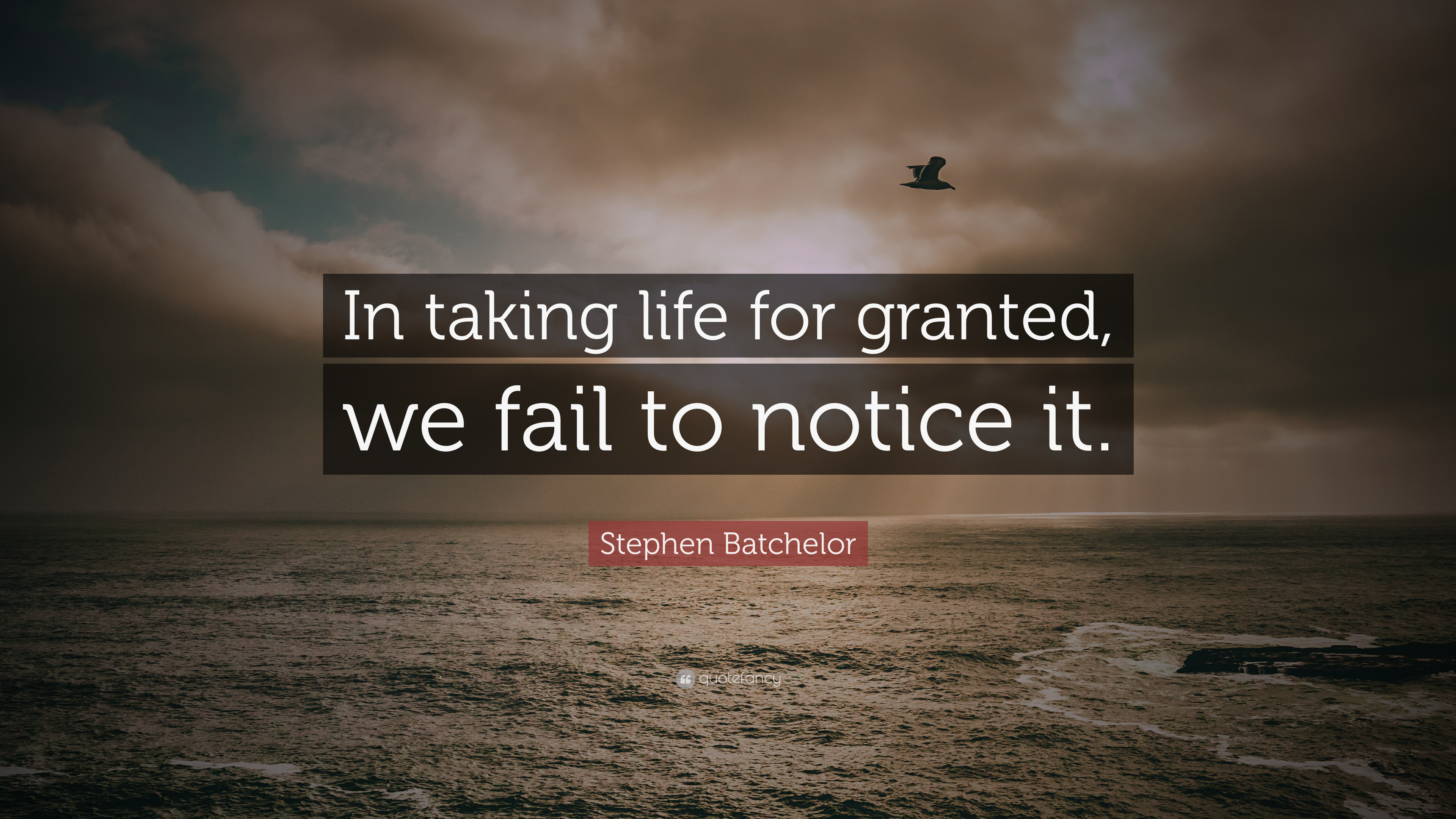 "Taking Life For Granted Quotes Stephen Batchelor Quote ""In Taking Life For Granted We Fail To"