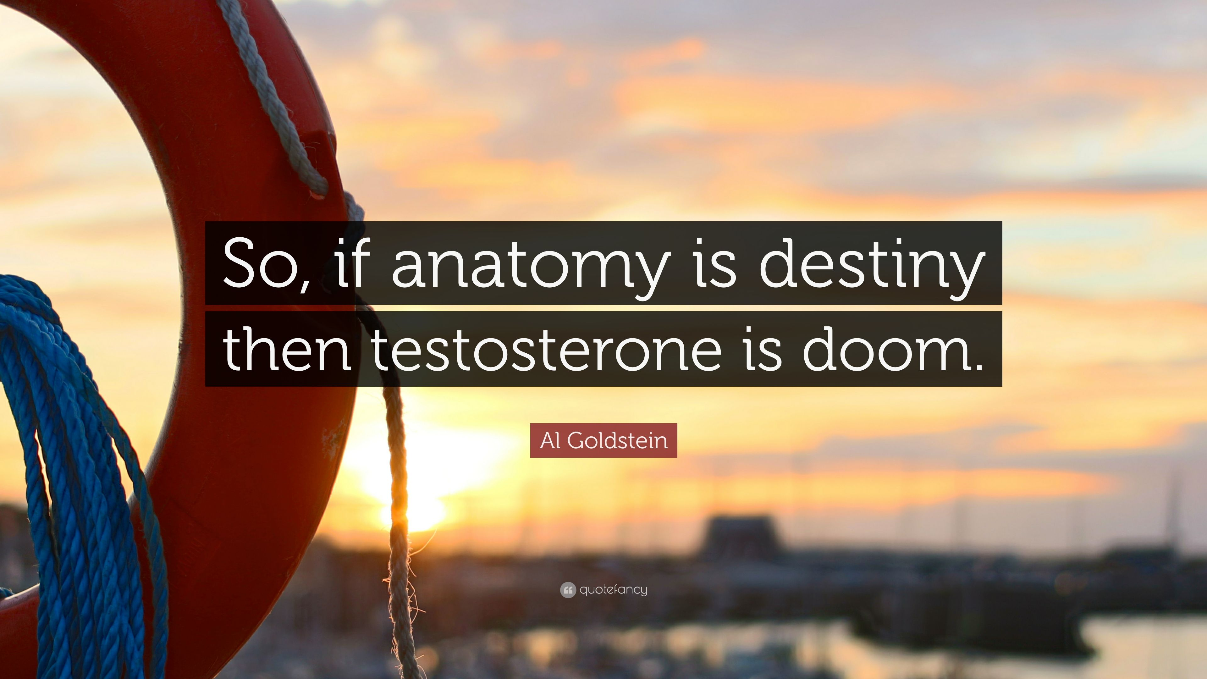 """Al Goldstein Quote: """"So, if anatomy is destiny then testosterone is ..."""