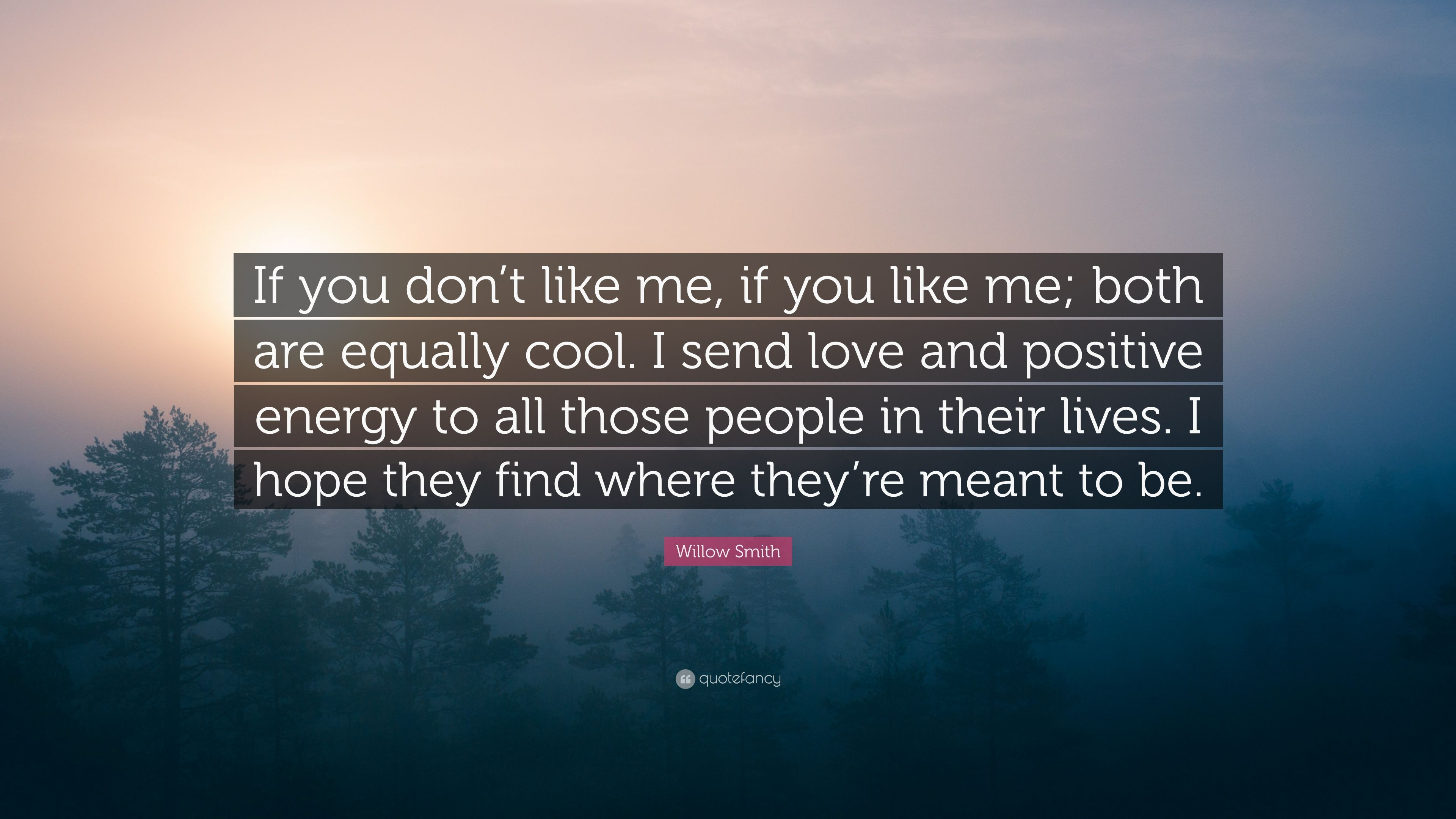 Willow Smith Quote If You Dont Like Me If You Like Me Both Are