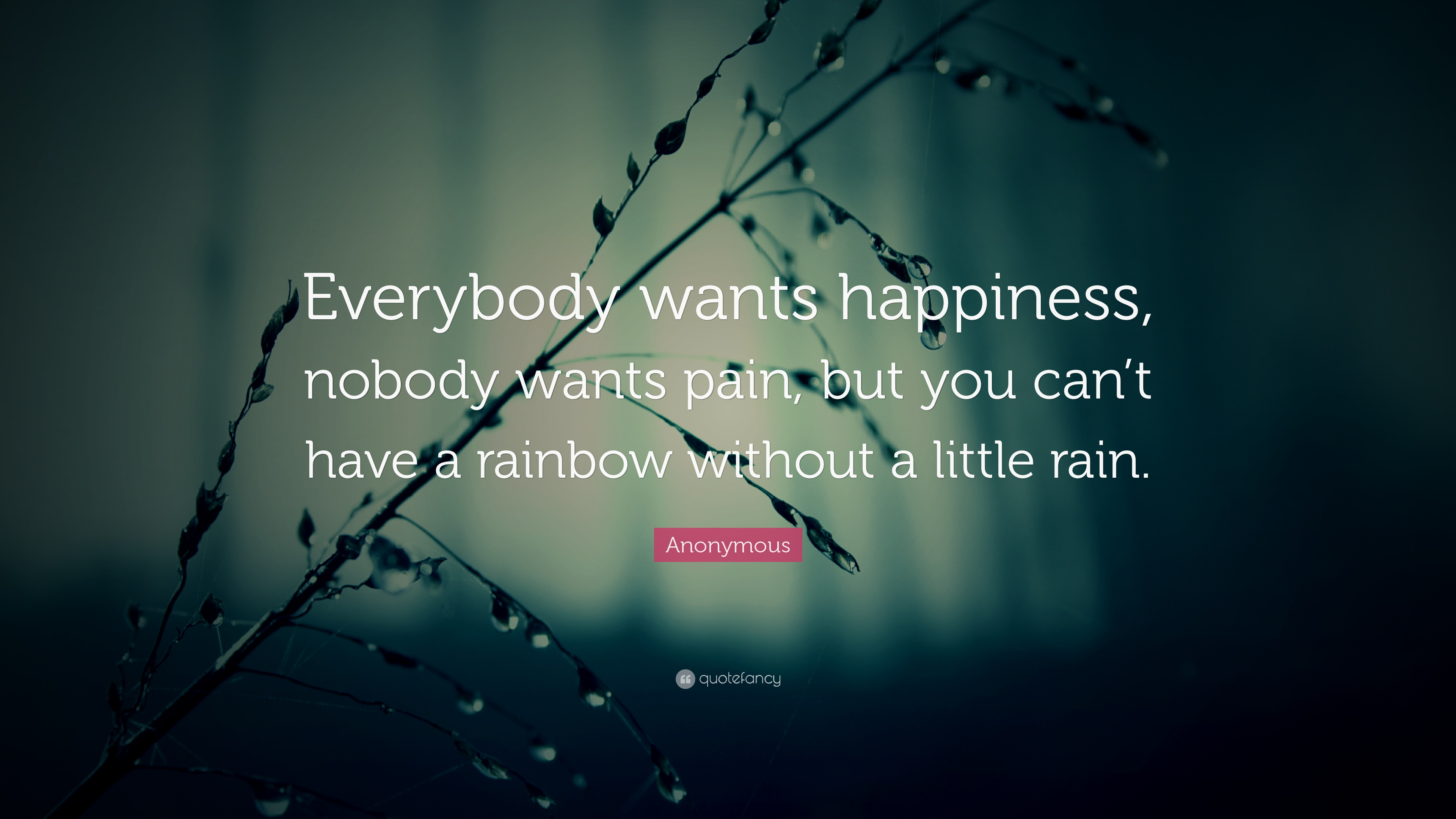 Anonymous Quotes Delectable Anonymous Quotes 79 Wallpapers  Quotefancy
