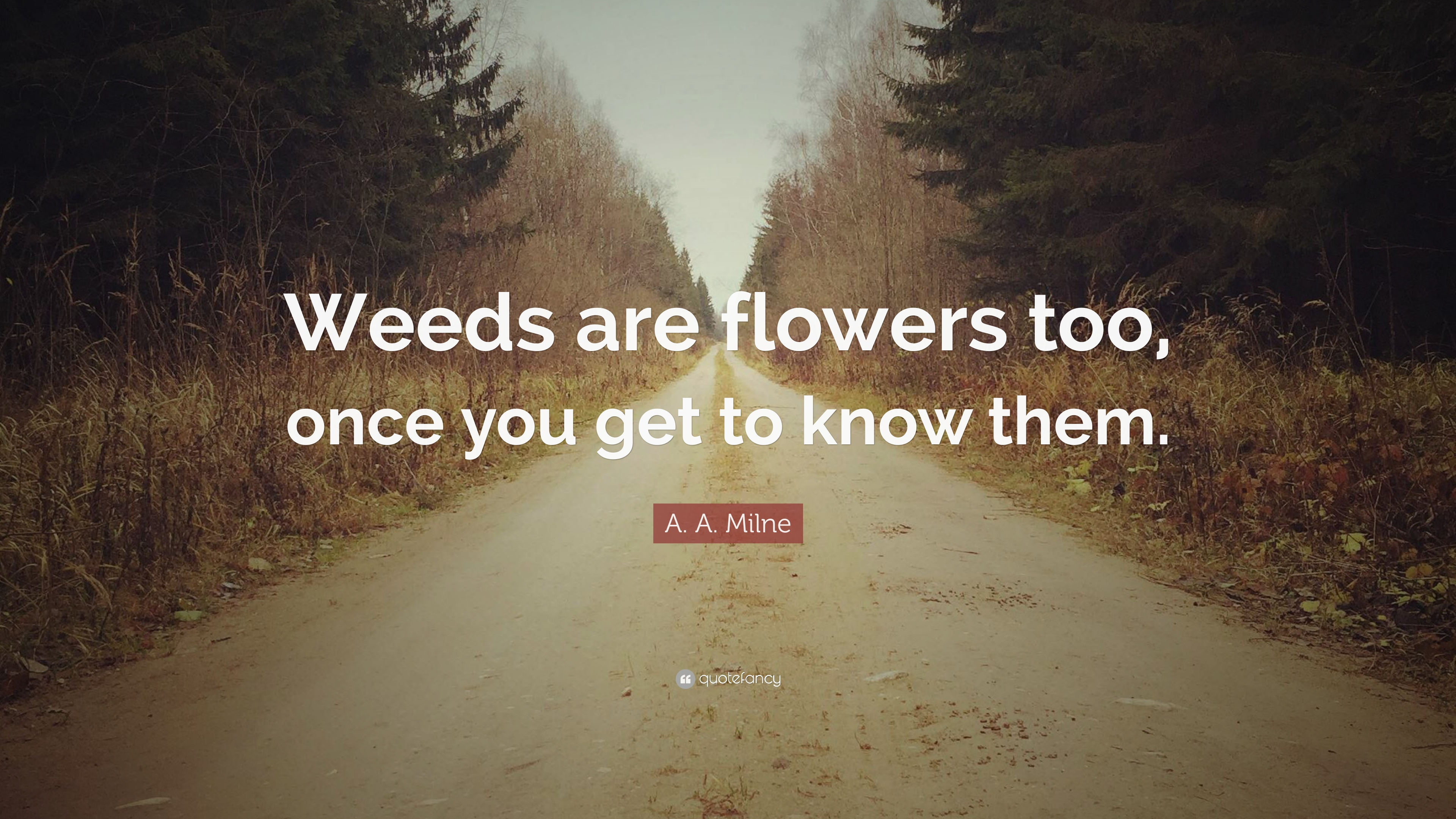 A A Milne Quote Weeds Are Flowers Too Once You Get To Know Them