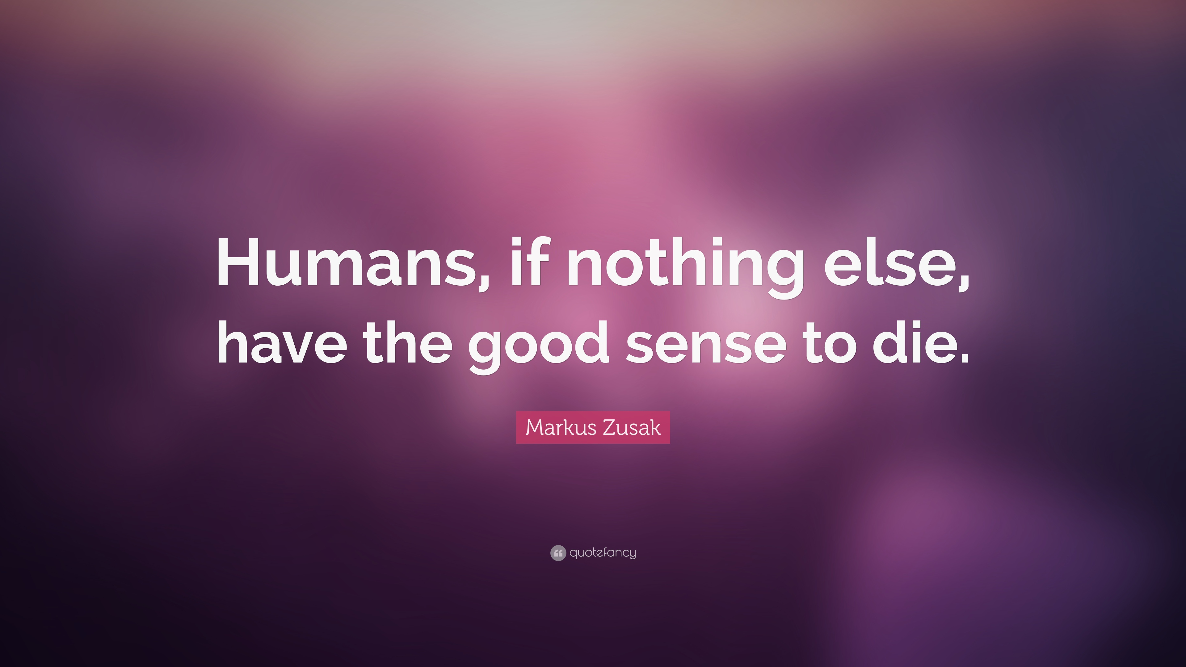 """Markus Zusak Quote: """"Humans, If Nothing Else, Have The"""
