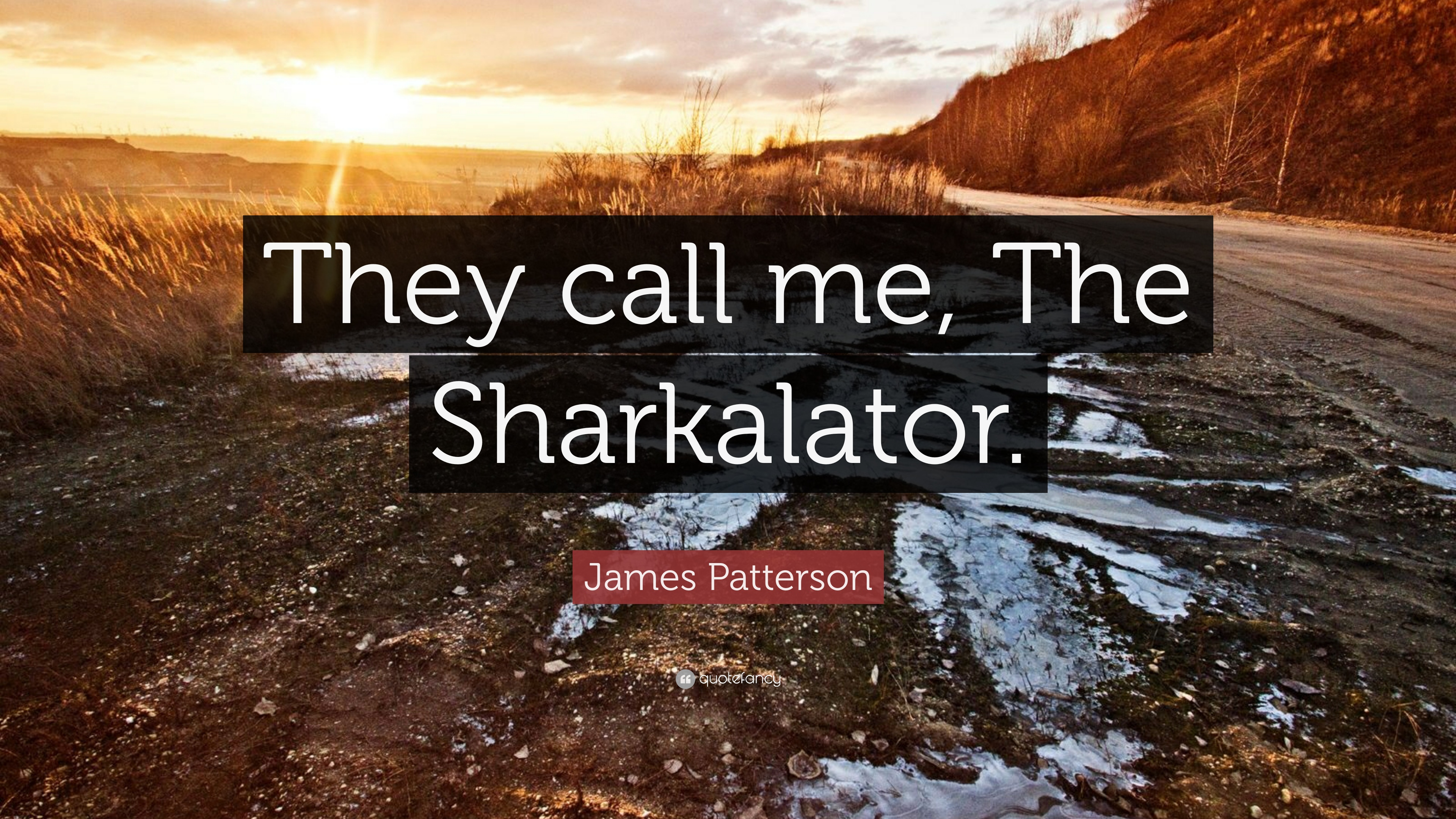 "James Patterson Quote: ""They Call Me, The Sharkalator"