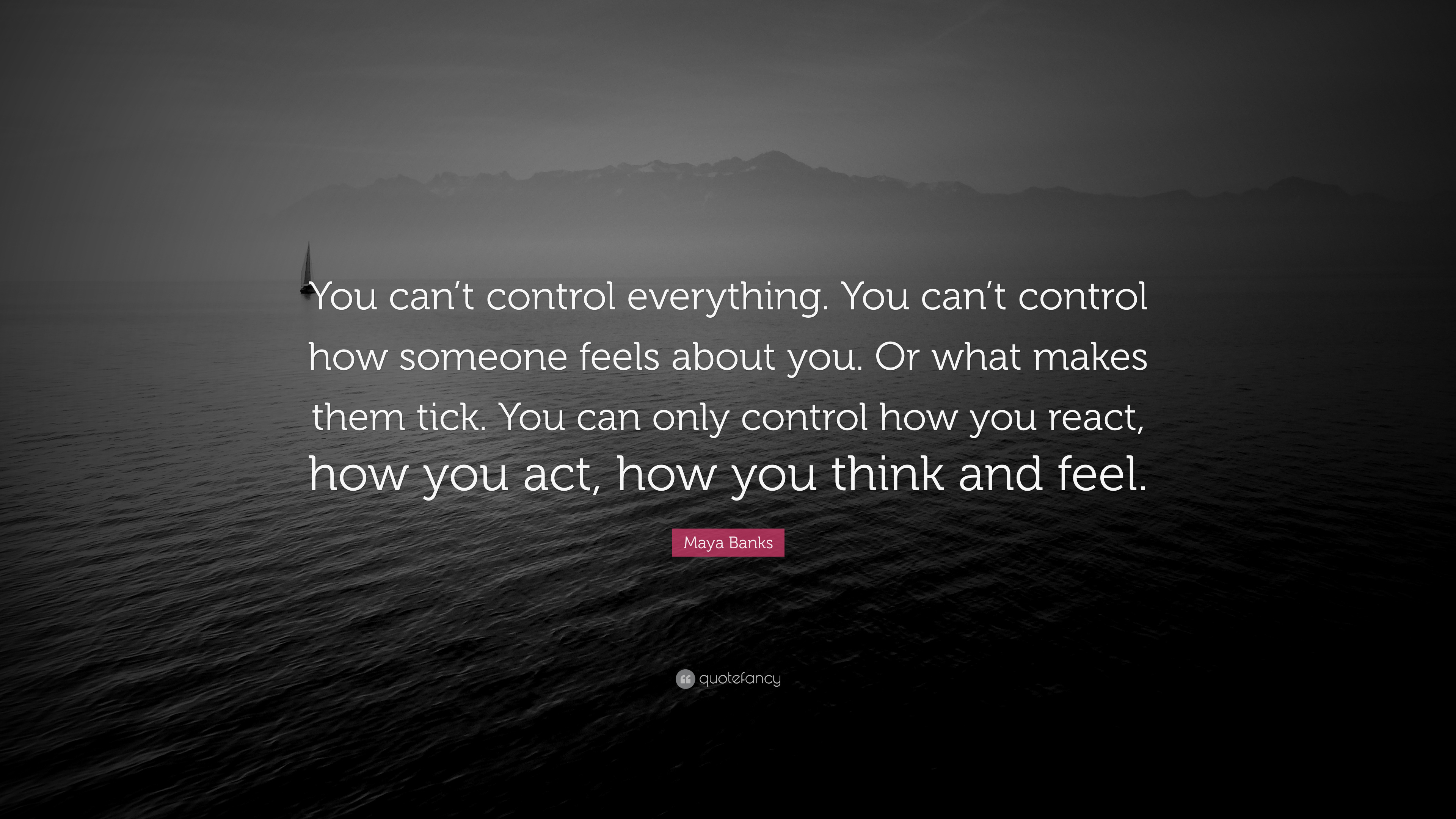 "Maya Banks Quote: ""You Can't Control Everything. You Can't"