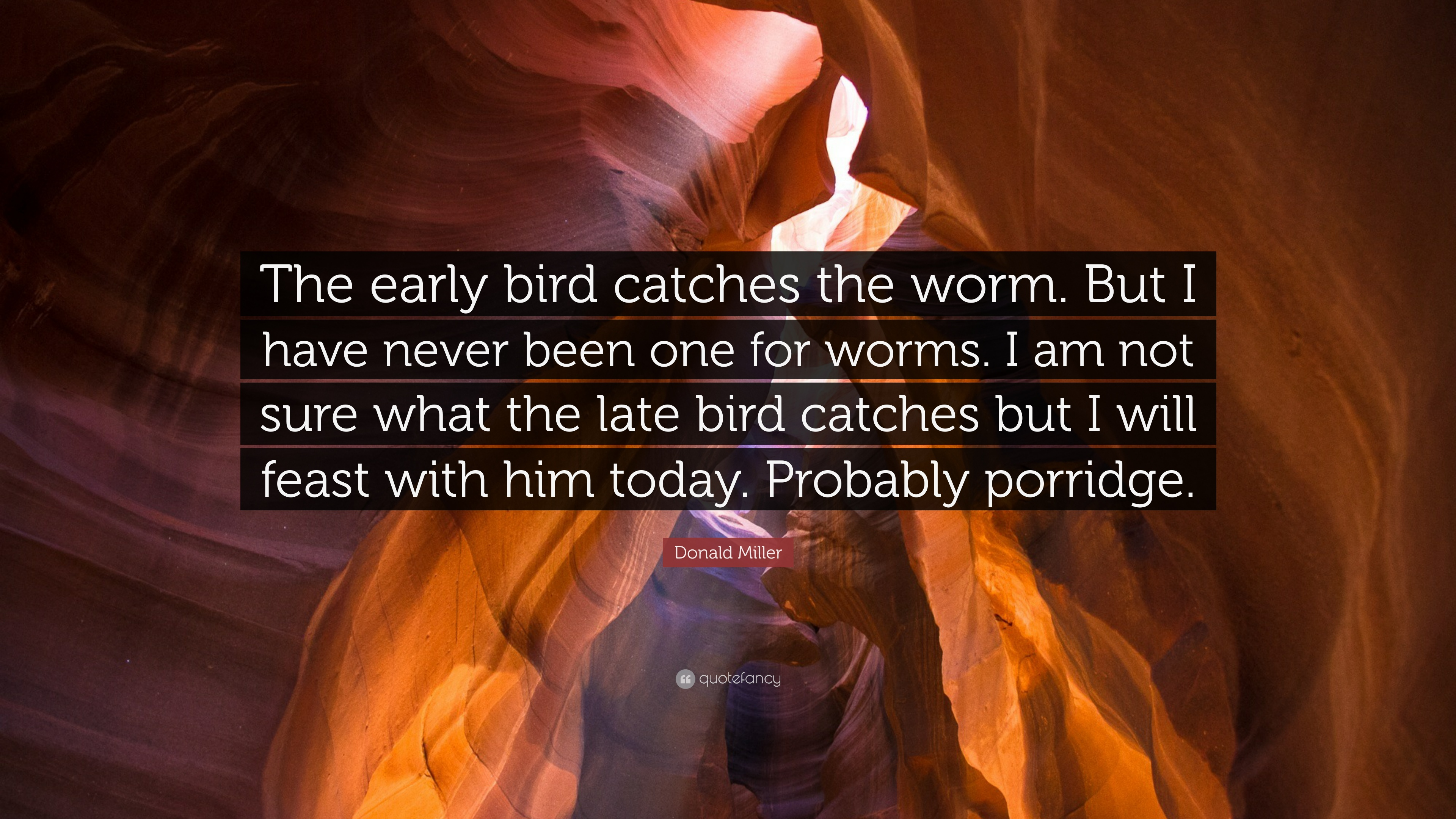 Donald Miller Quote The Early Bird Catches The Worm But I Have