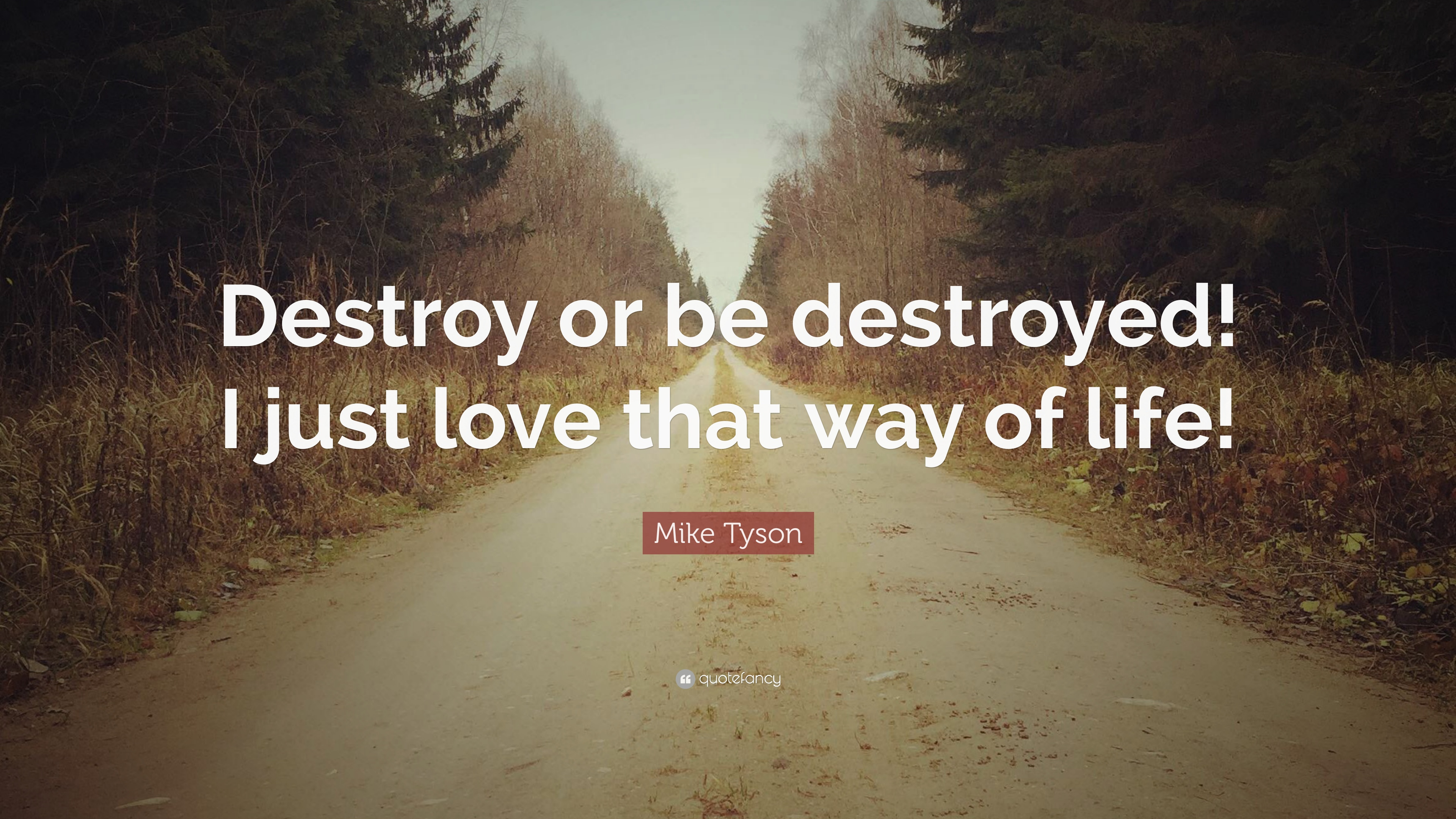 Mike Tyson Quote: U201cDestroy Or Be Destroyed! I Just Love That Way Of