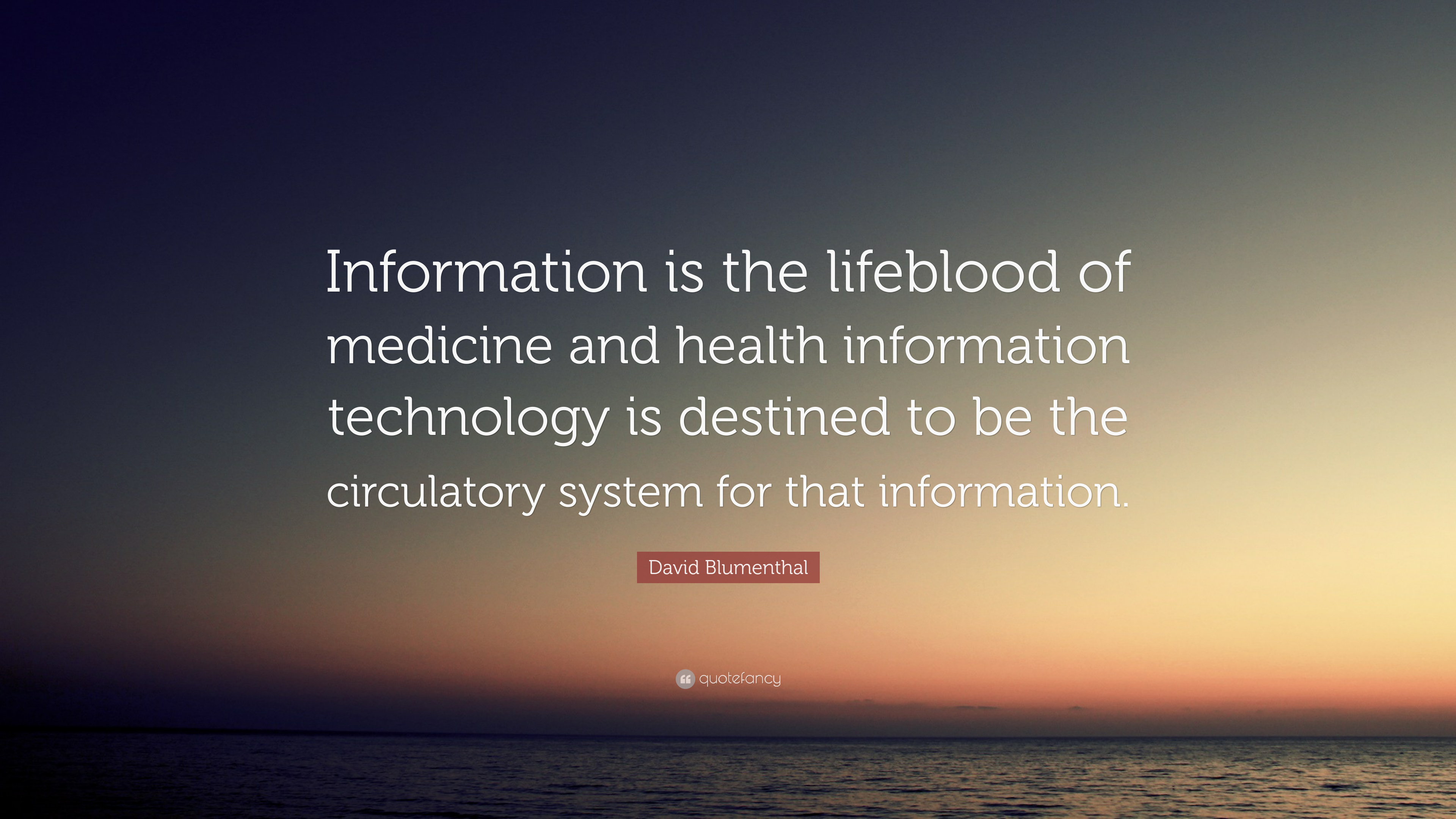 the lifeblood organization of information systems information technology essay The term ''information technology systems in an organization '' is composed of four distinct parts which include: an organization, information in an organization, and information technology and information technology systems in an organization.