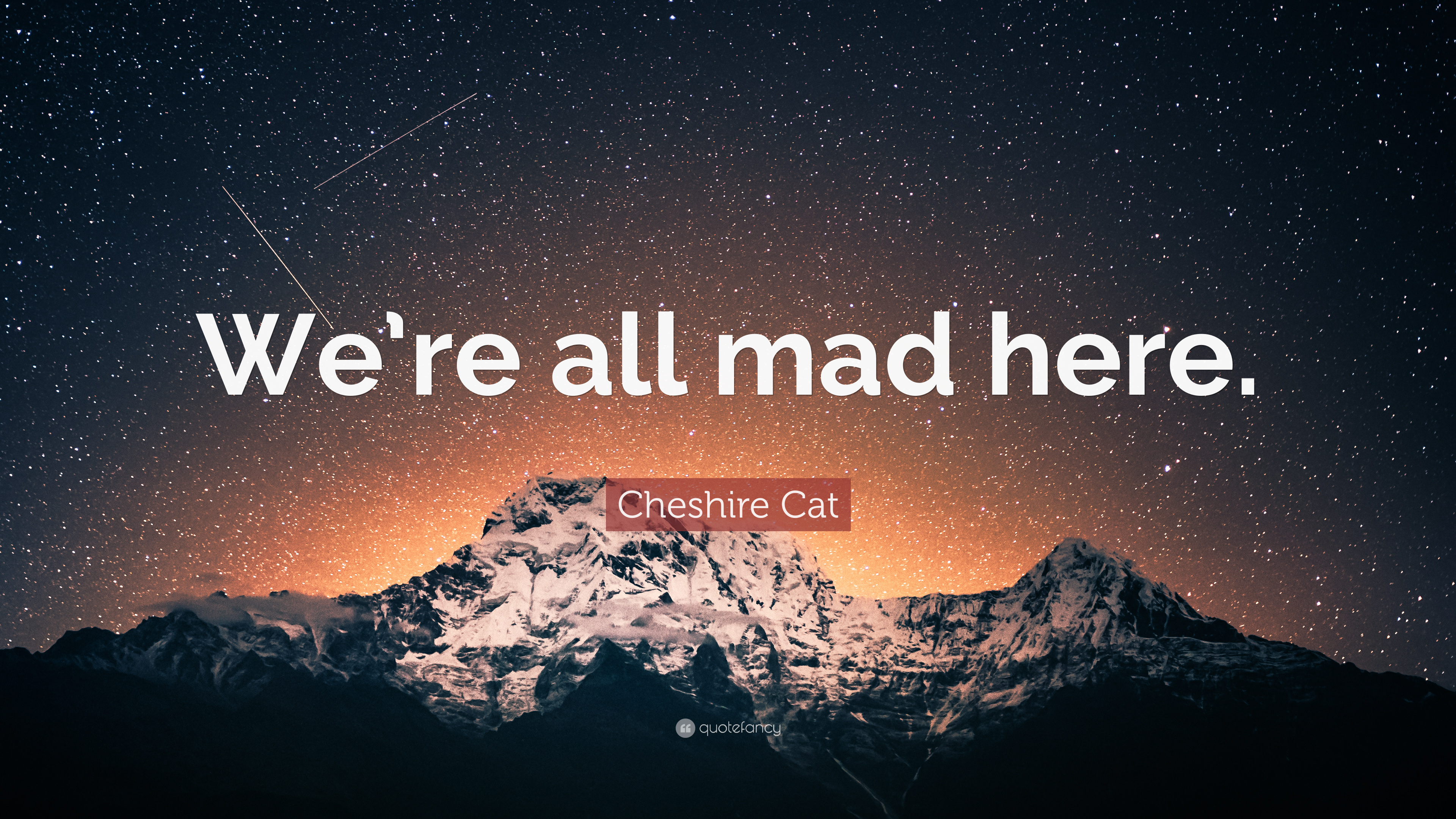 Cheshire Cat Quote We Re All Mad Here 7 Wallpapers Quotefancy