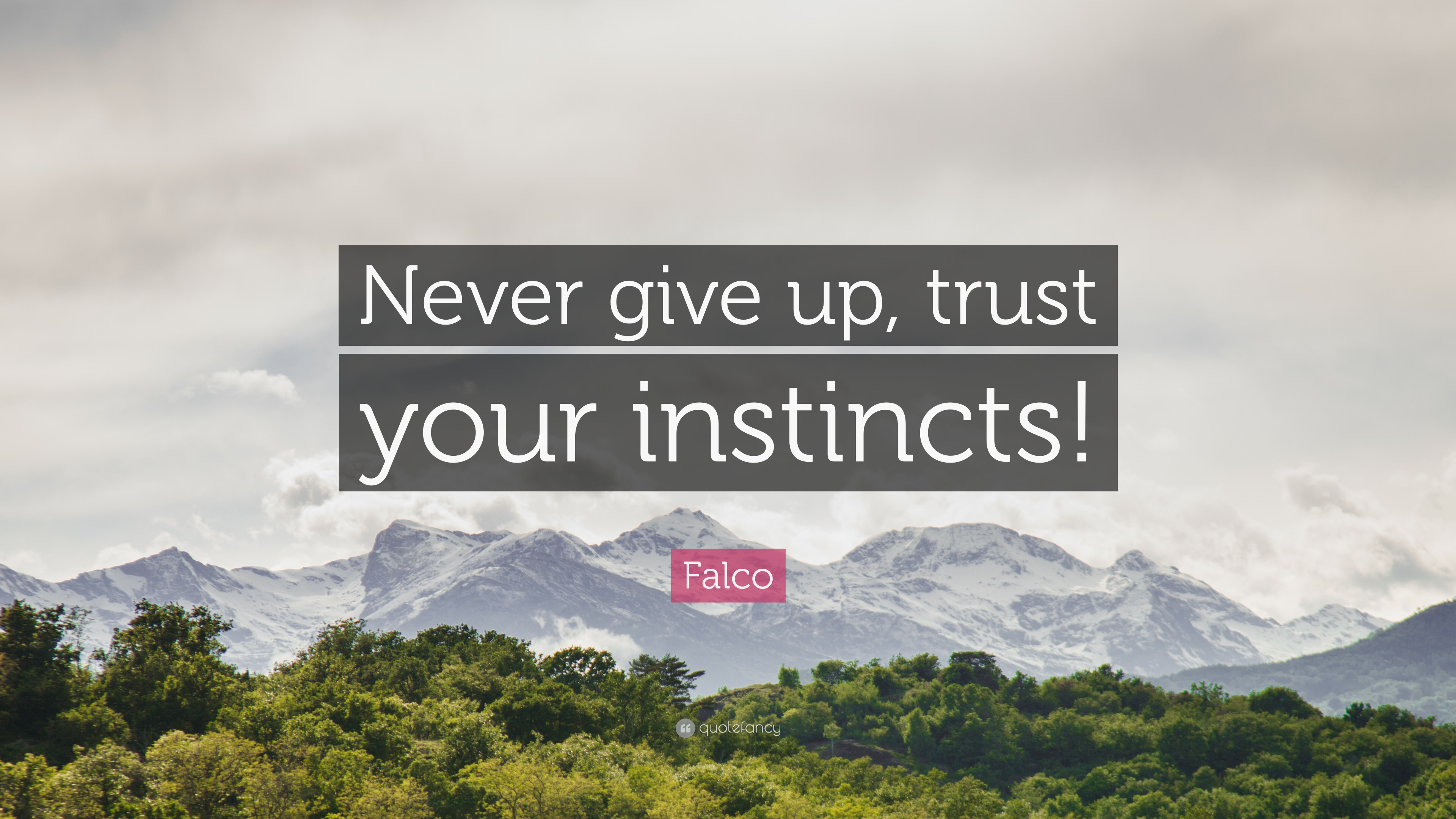 Falco Quote Never Give Up Trust Your Instincts 7 Wallpapers