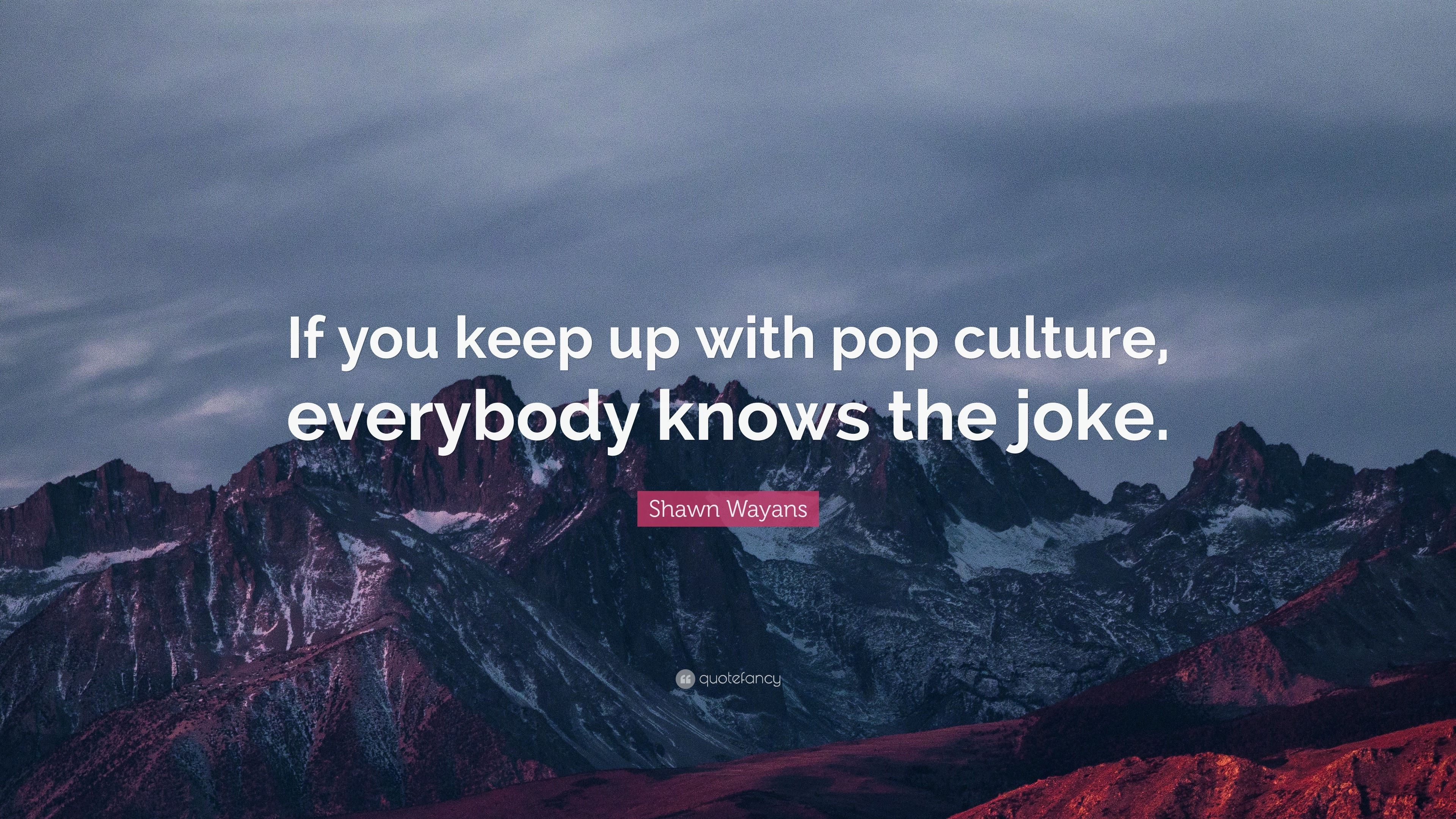 Shawn Wayans Quote If You Keep Up With Pop Culture