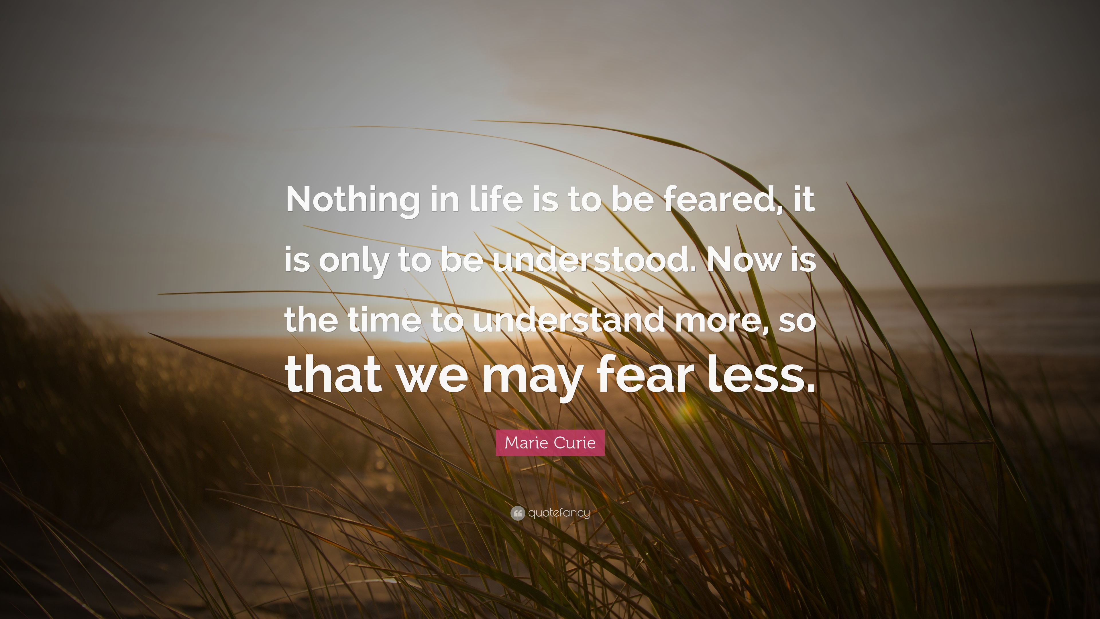 """nothing in life is to be feared it is only to be understood """"nothing in life is to be feared, it is only to be understood now is the time to  understand more, so that we may fear less"""" share an example of a time when  you."""