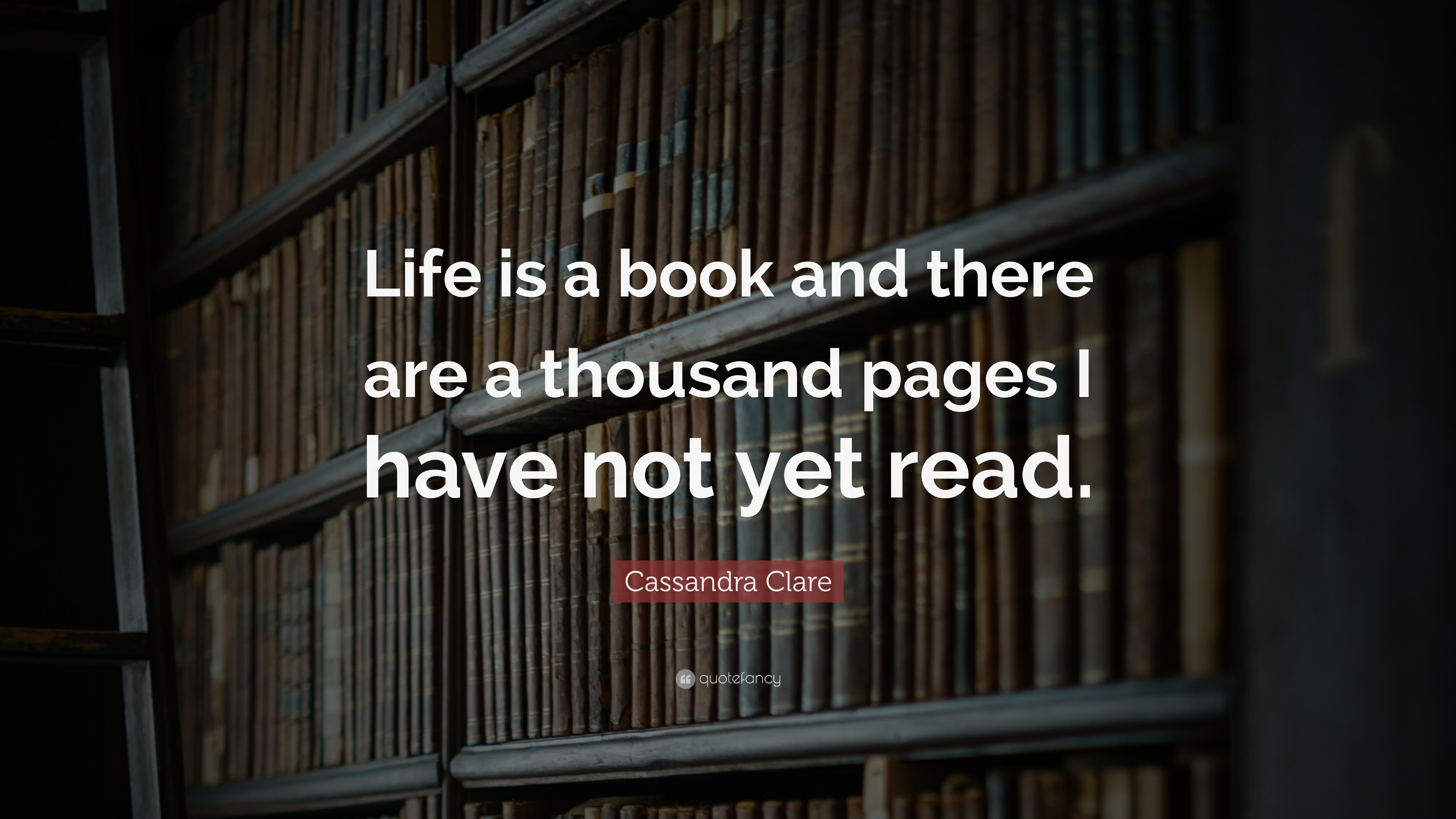 Cassandra Clare Quote: U201cLife Is A Book And There Are A Thousand Pages I