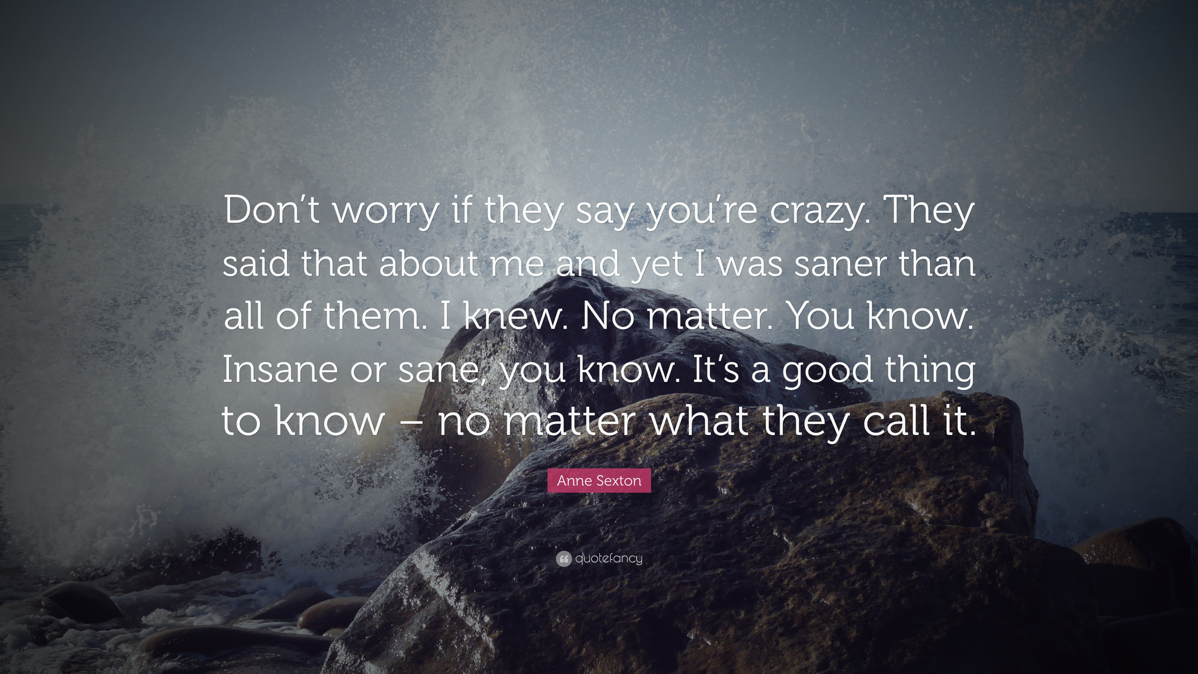 Anne Sexton Quote: U201cDonu0027t Worry If They Say Youu0027re Crazy