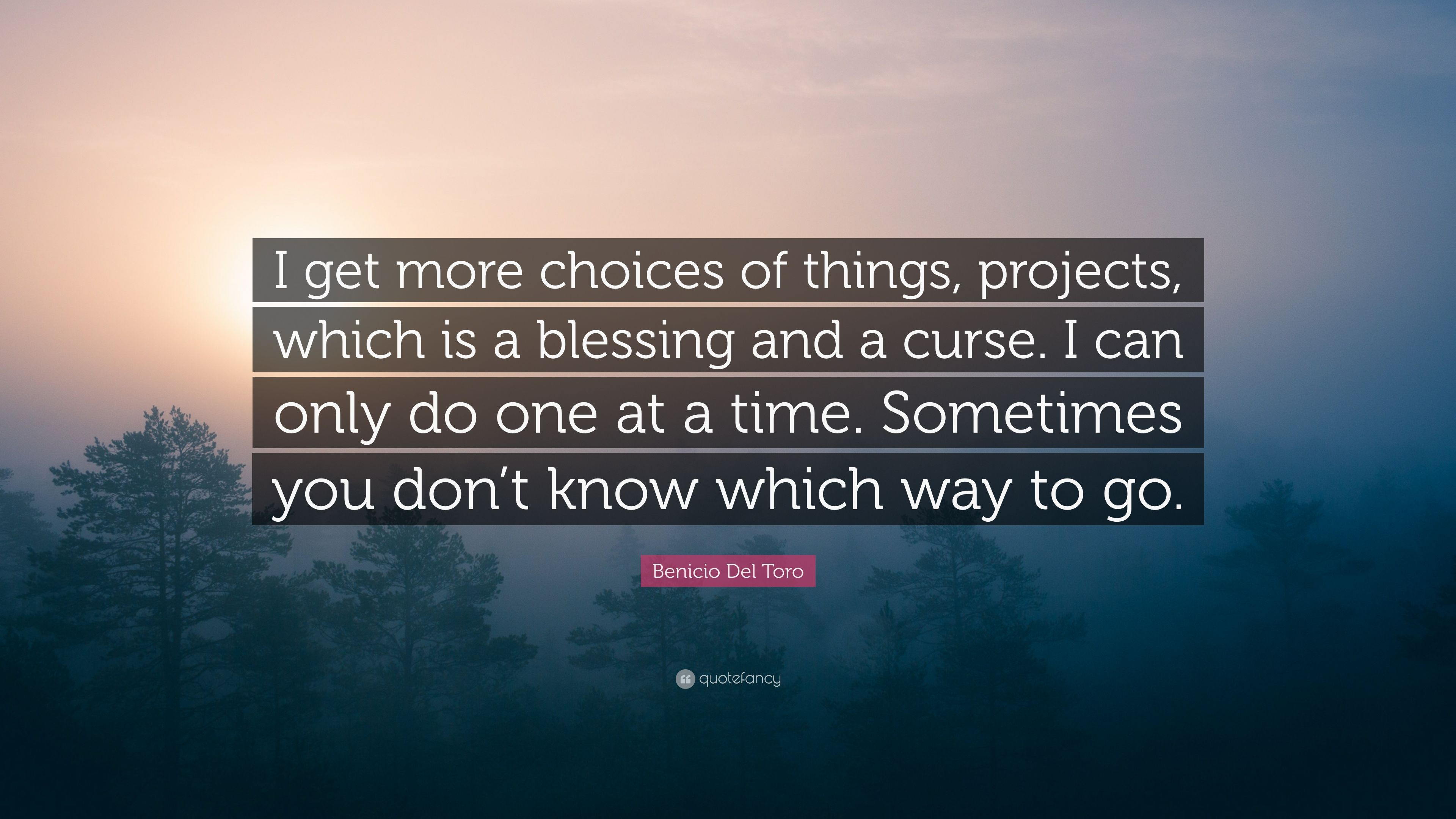 Benicio Del Toro Quote I Get More Choices Of Things Projects Which