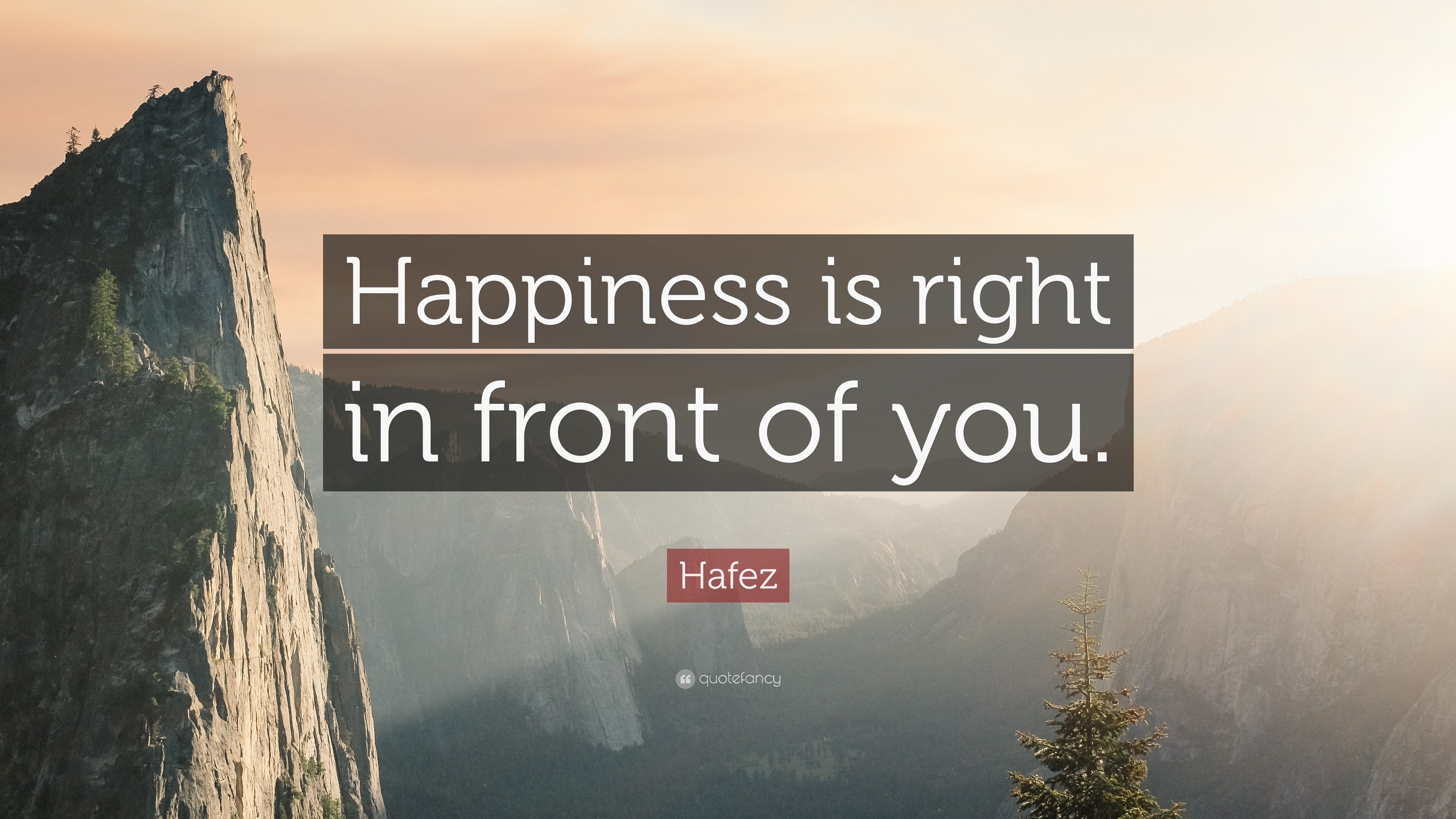 Hafez Quote Happiness Is Right In Front Of You 6 Wallpapers