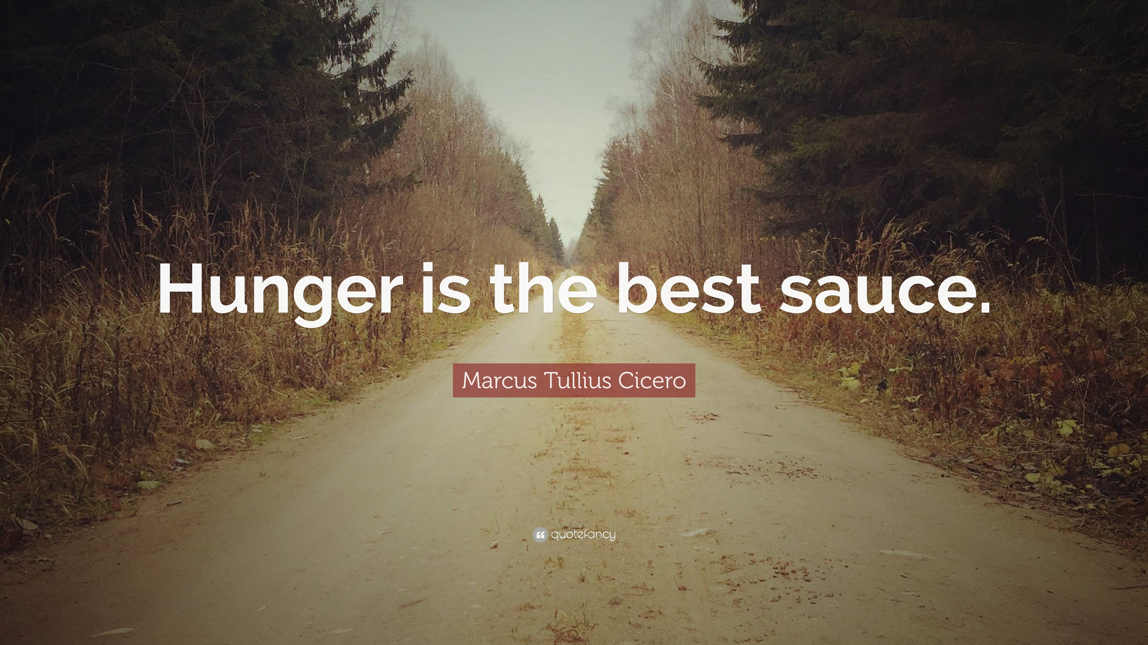 Hunger Is The Best Sauce Essay Examples