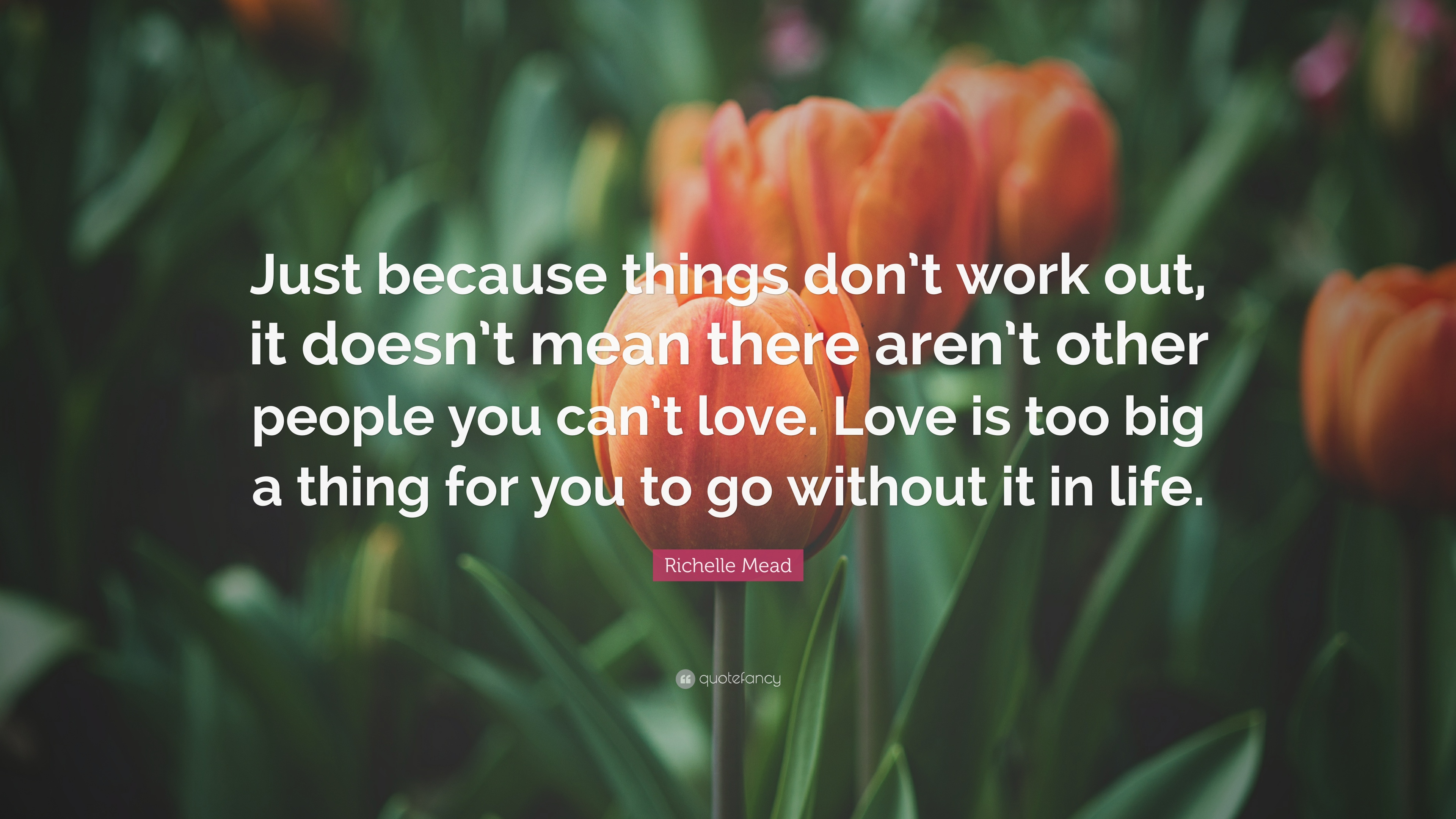 Richelle Mead Quote Just Because Things Dont Work Out It Doesnt