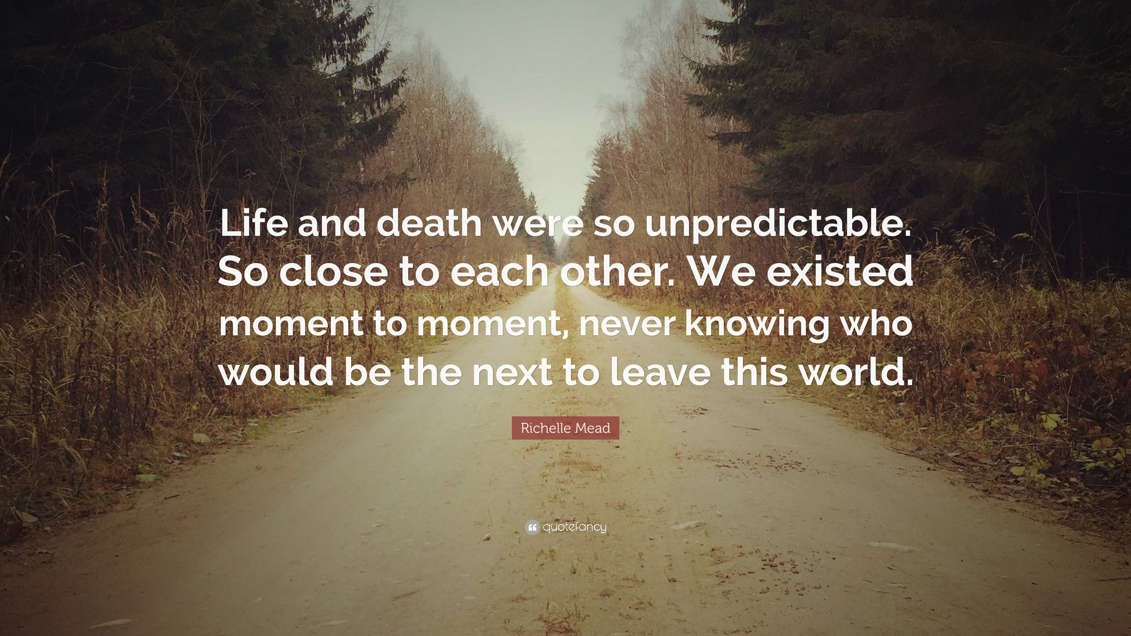 "Quotes About Life And Death Richelle Mead Quote ""Life And Death Were So Unpredictableso"