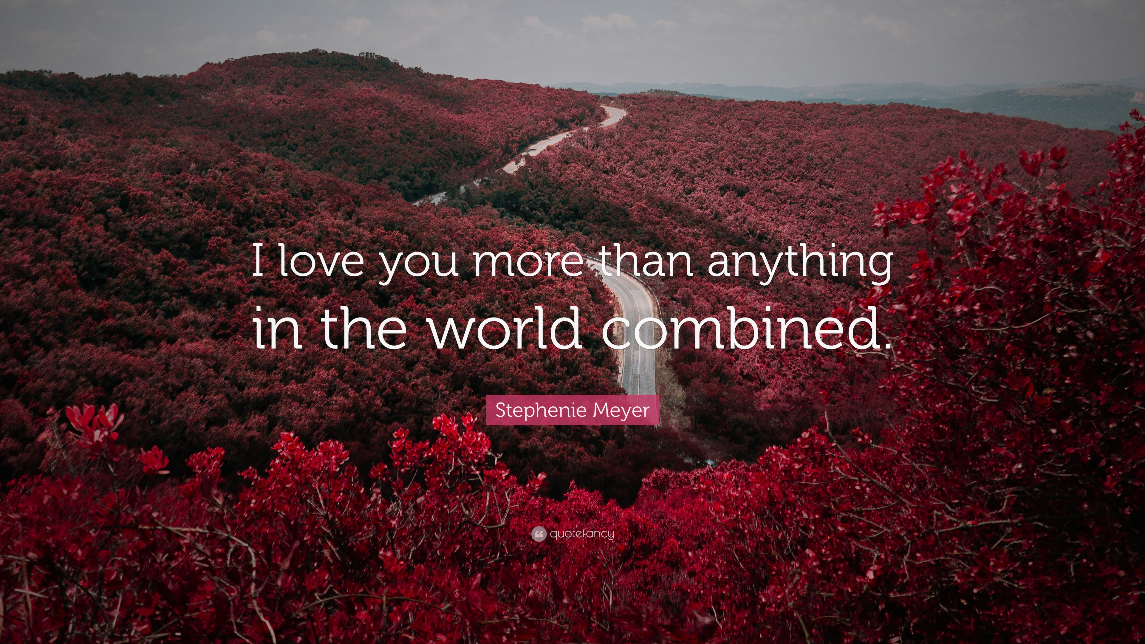 "I Love You More Than Quotes Stephenie Meyer Quote ""I Love You More Than Anything In The World"