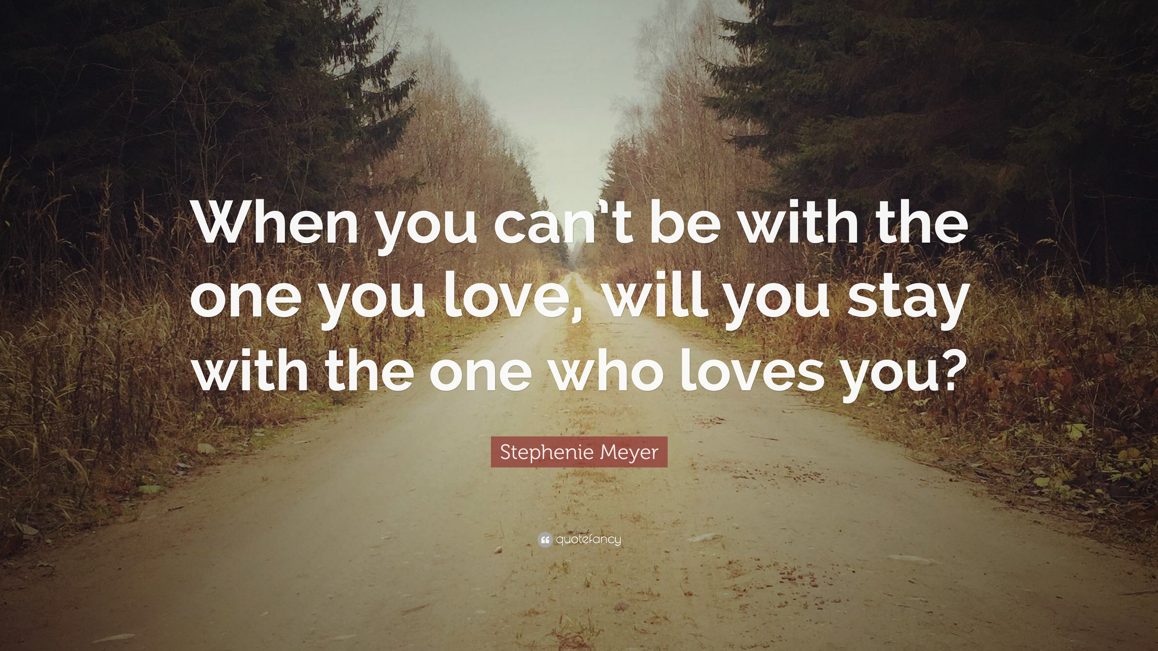 "Love The One That Loves You Quotes Custom Stephenie Meyer Quote ""When You Can't Be With The One You Love"