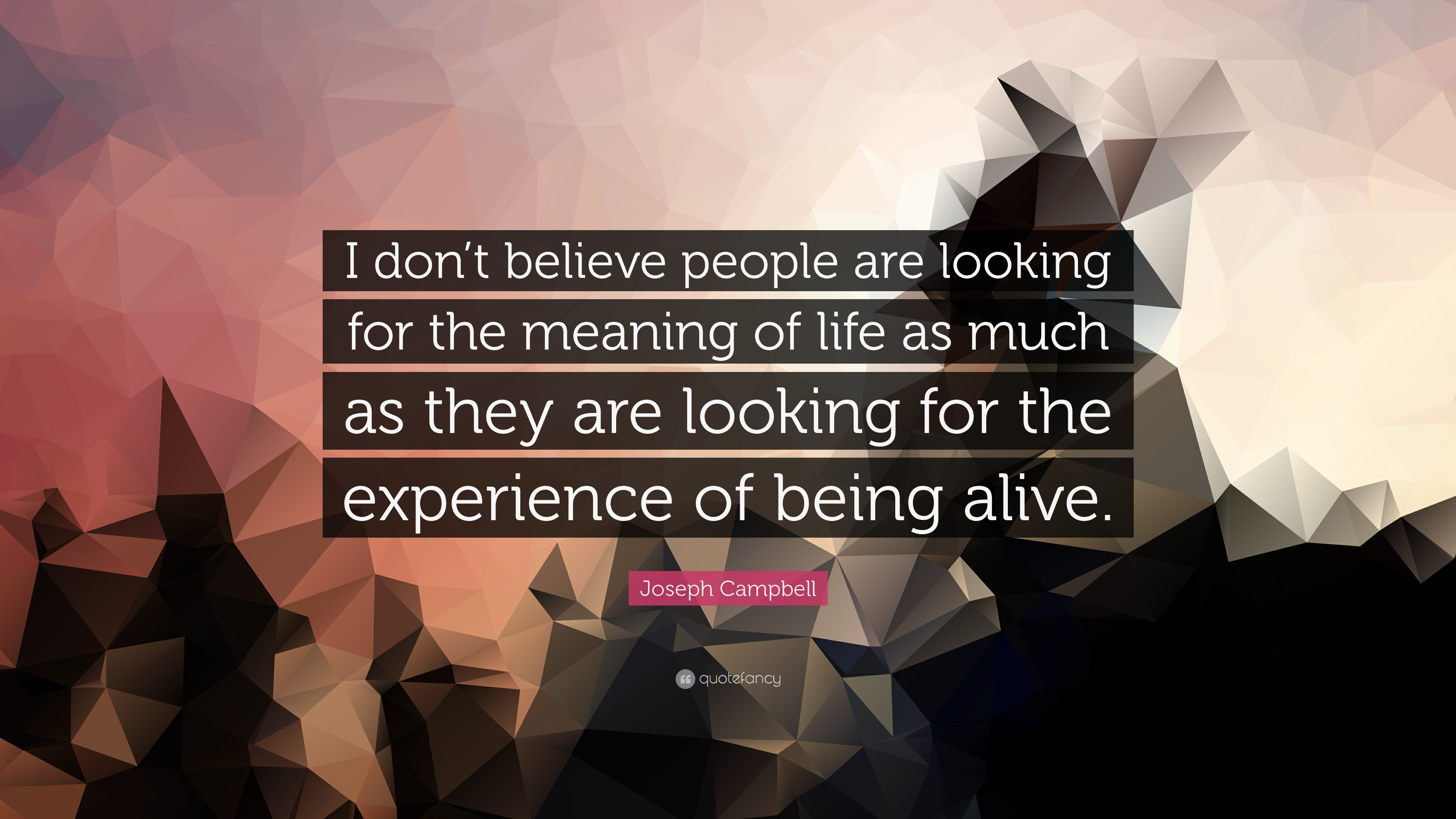 joseph campbell quote ldquo i don t believe people are looking for the joseph campbell quote ldquoi don t believe people are looking for the meaning