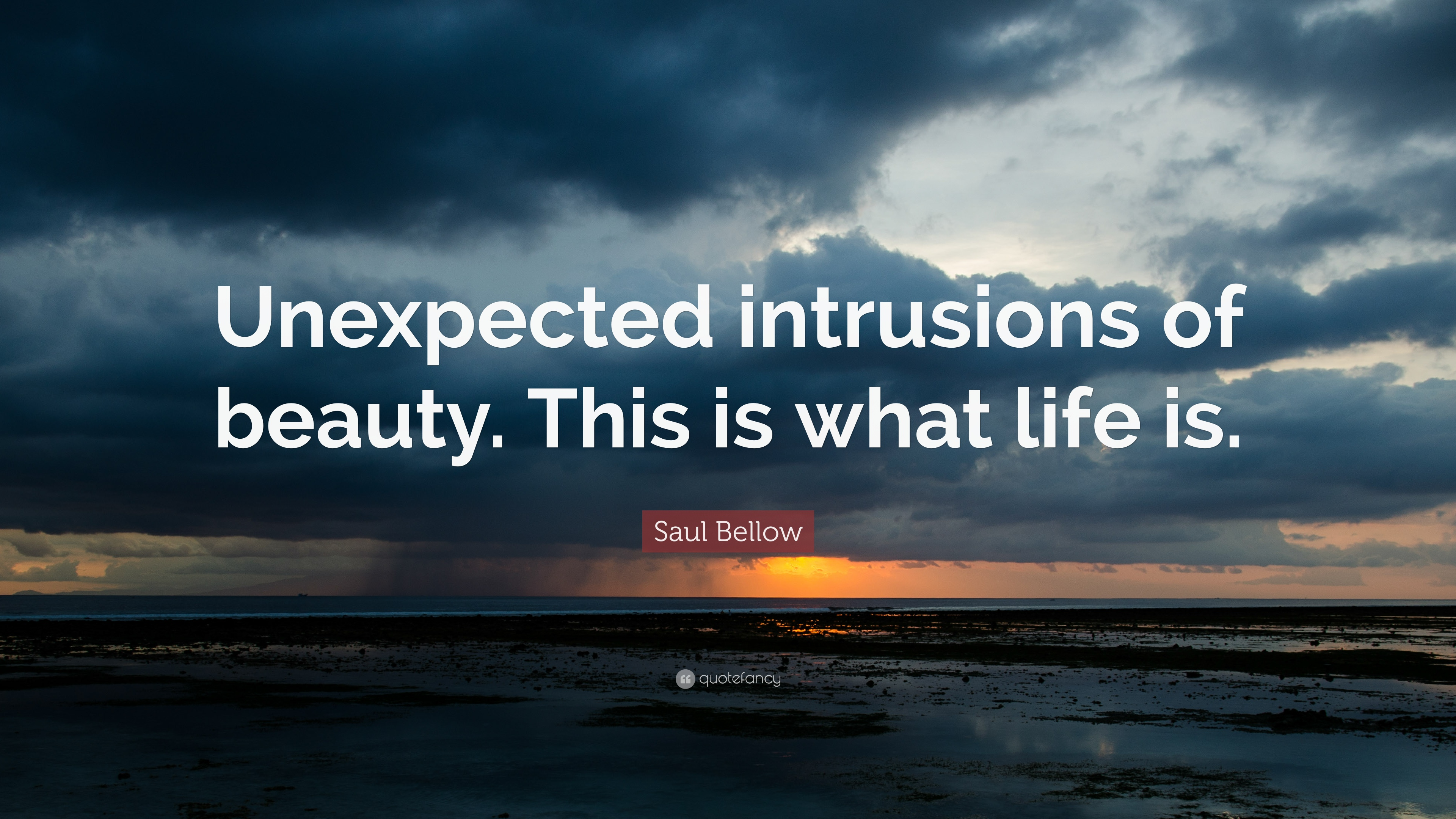 "saul bellow quote: ""unexpected intrusions of beauty. this is what"
