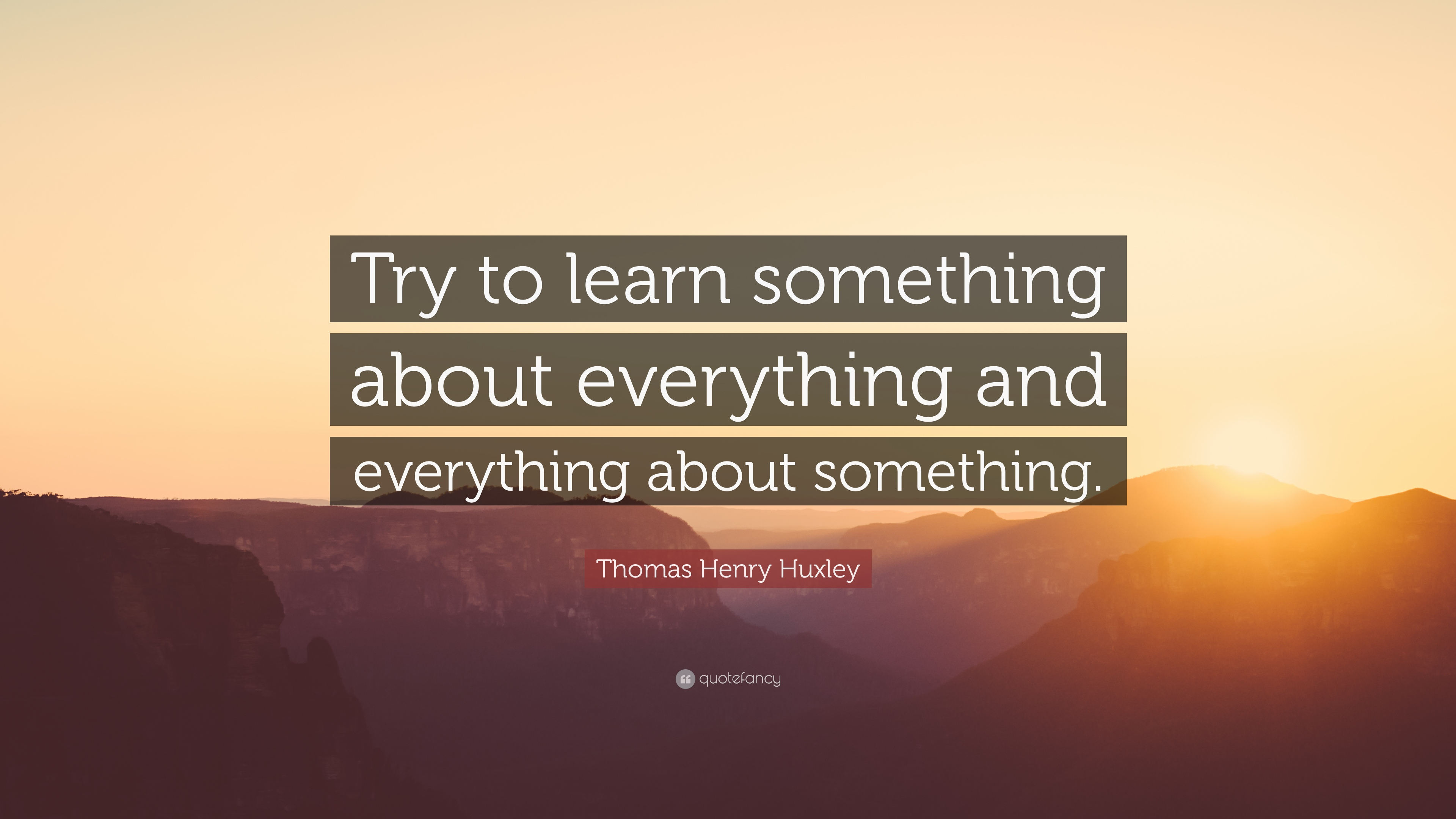 Learning Quotes: U201cTry To Learn Something About Everything And Everything  About Something.u201d