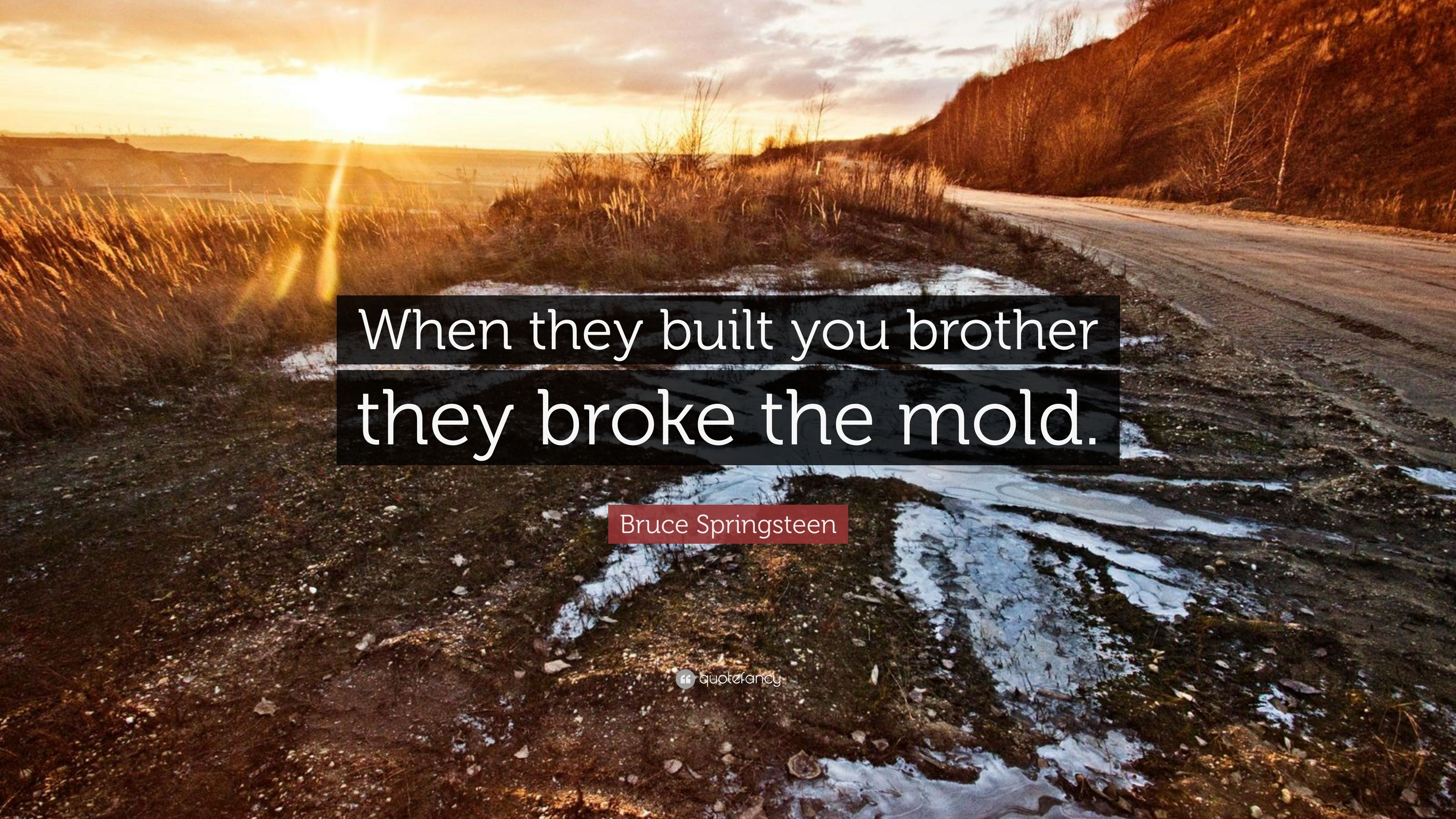 """Bruce Springsteen Quote: """"When they built you brother they broke the"""