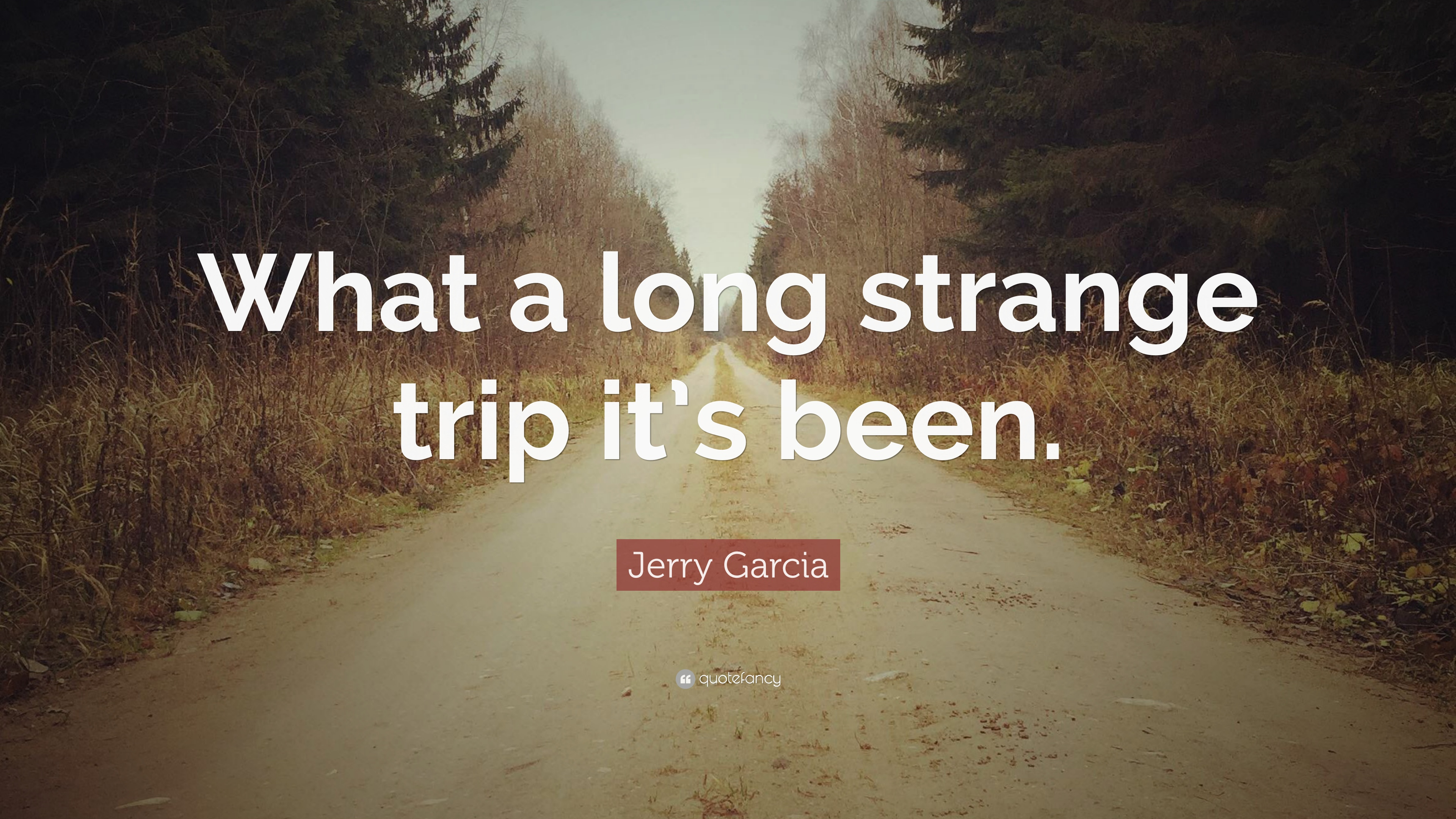 77 Wallpapers Jerry Garcia