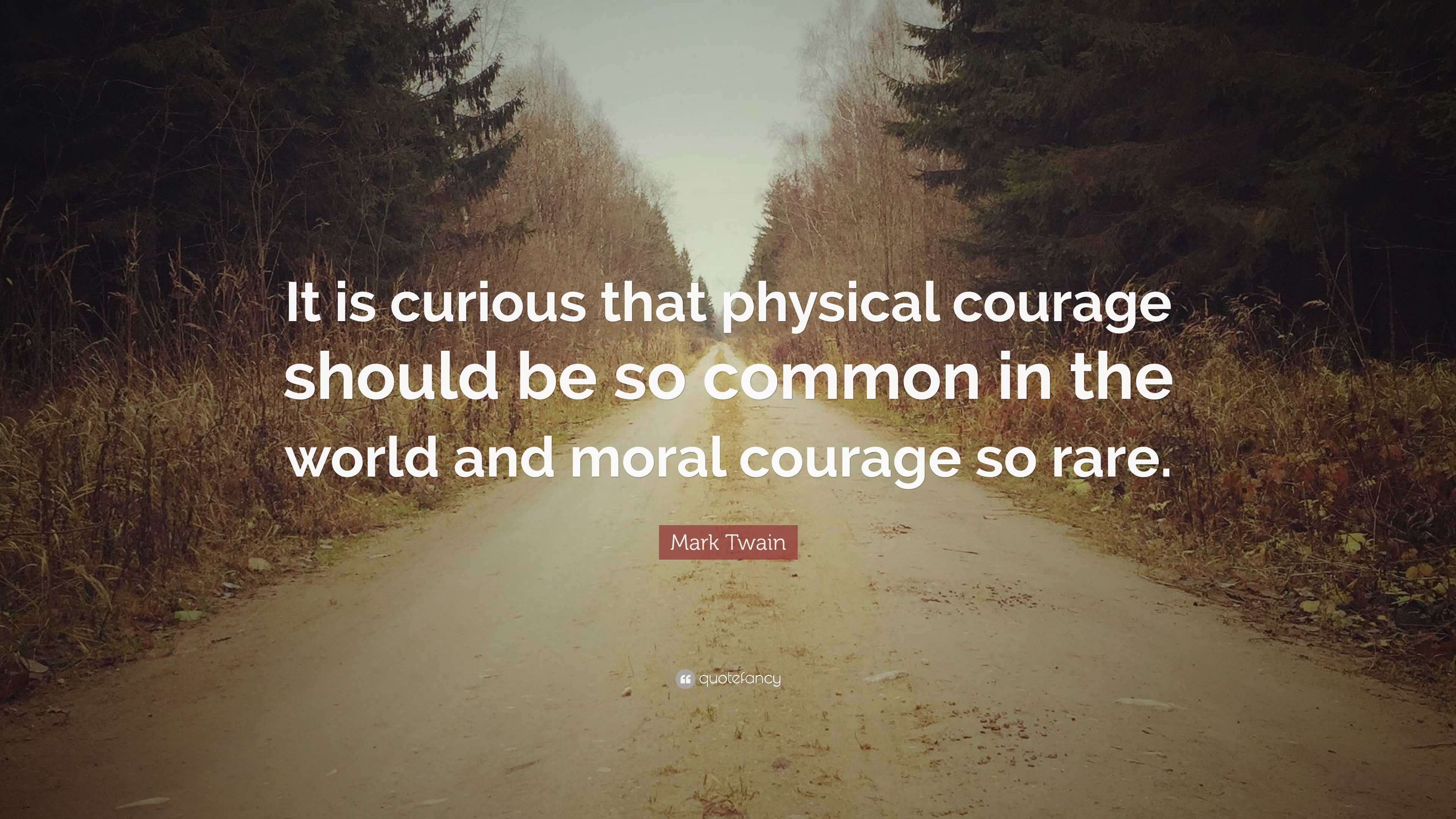 physical courage 2018-8-15 why is courage important in leadership  physical courage this is the type of courage many of us think of first – it is the bravery when faced with the risk.