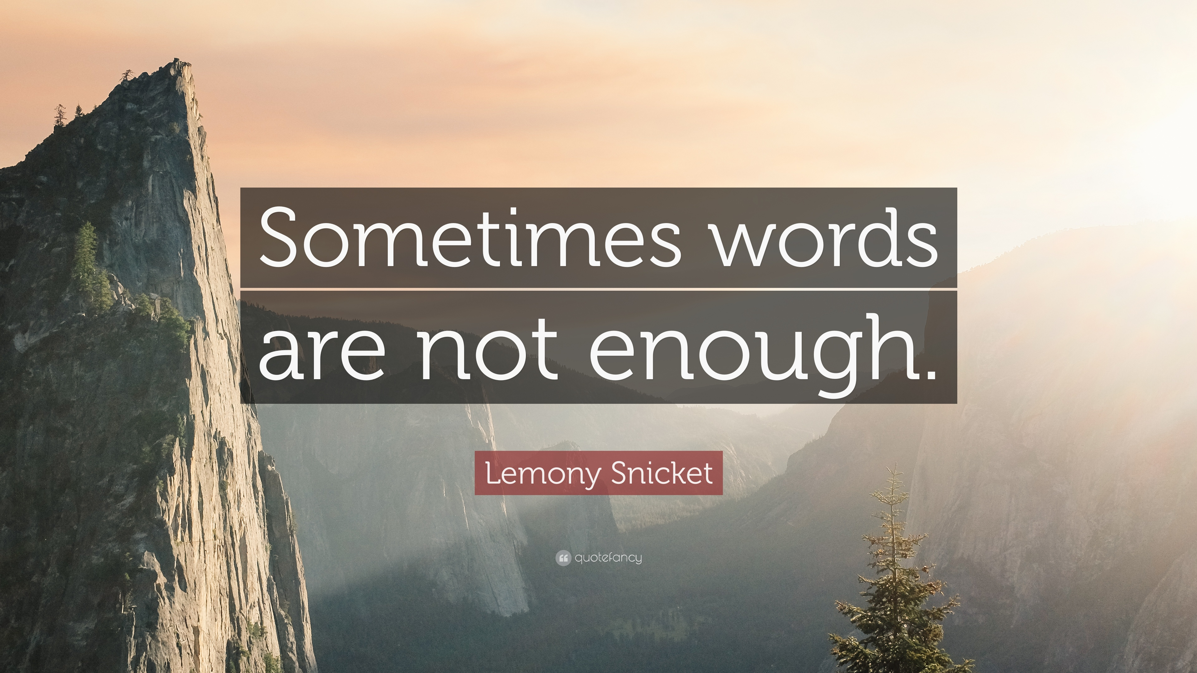 Lemony Snicket Quote Sometimes Words Are Not Enough 12