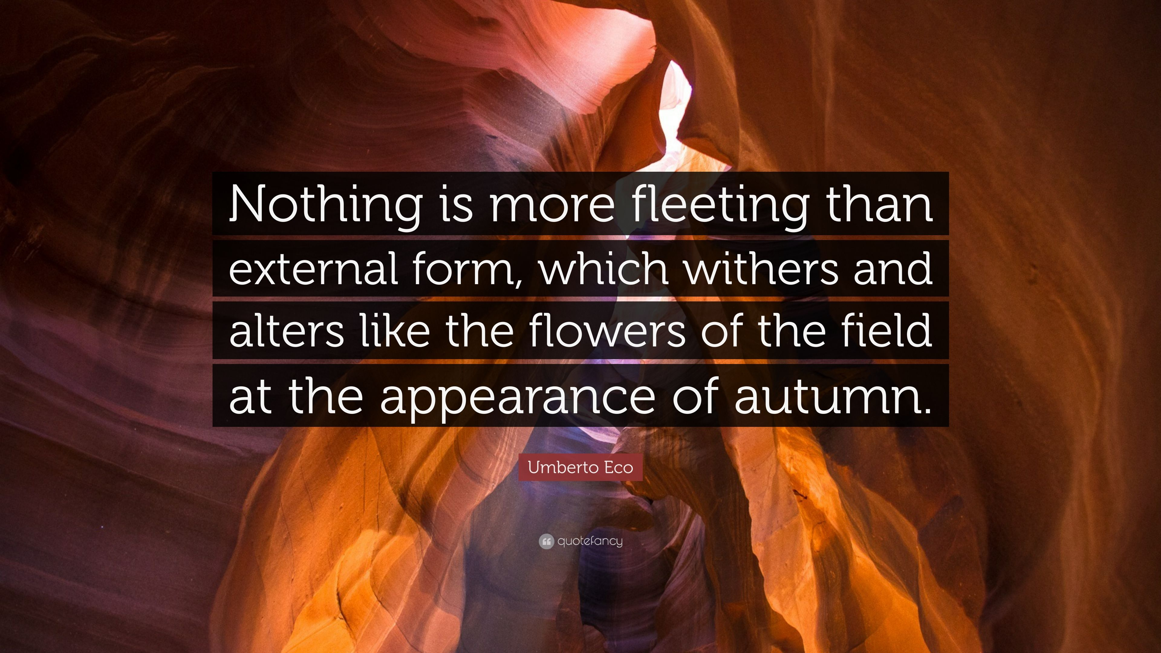 Exceptional Umberto Eco Quote: U201cNothing Is More Fleeting Than External Form, Which  Withers And